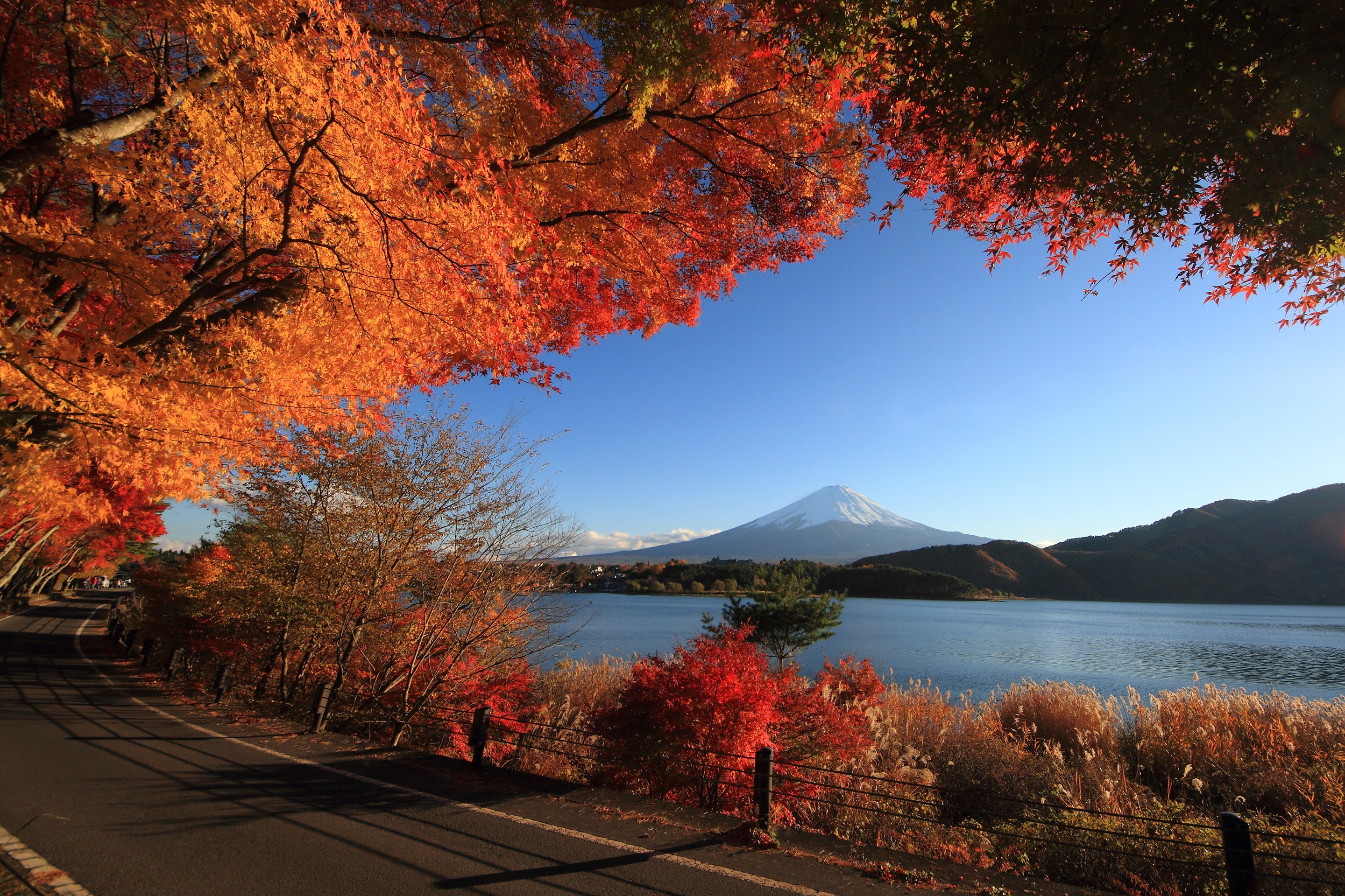 Lakes: Lakeside Autumn Color Road Water Trees Fall Red Leaves Lake ...