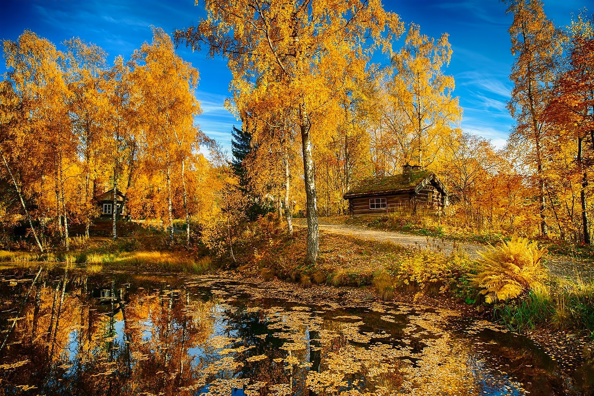 Lakes: Nature Lake Road Autumn Trees House Landscape Norway ...