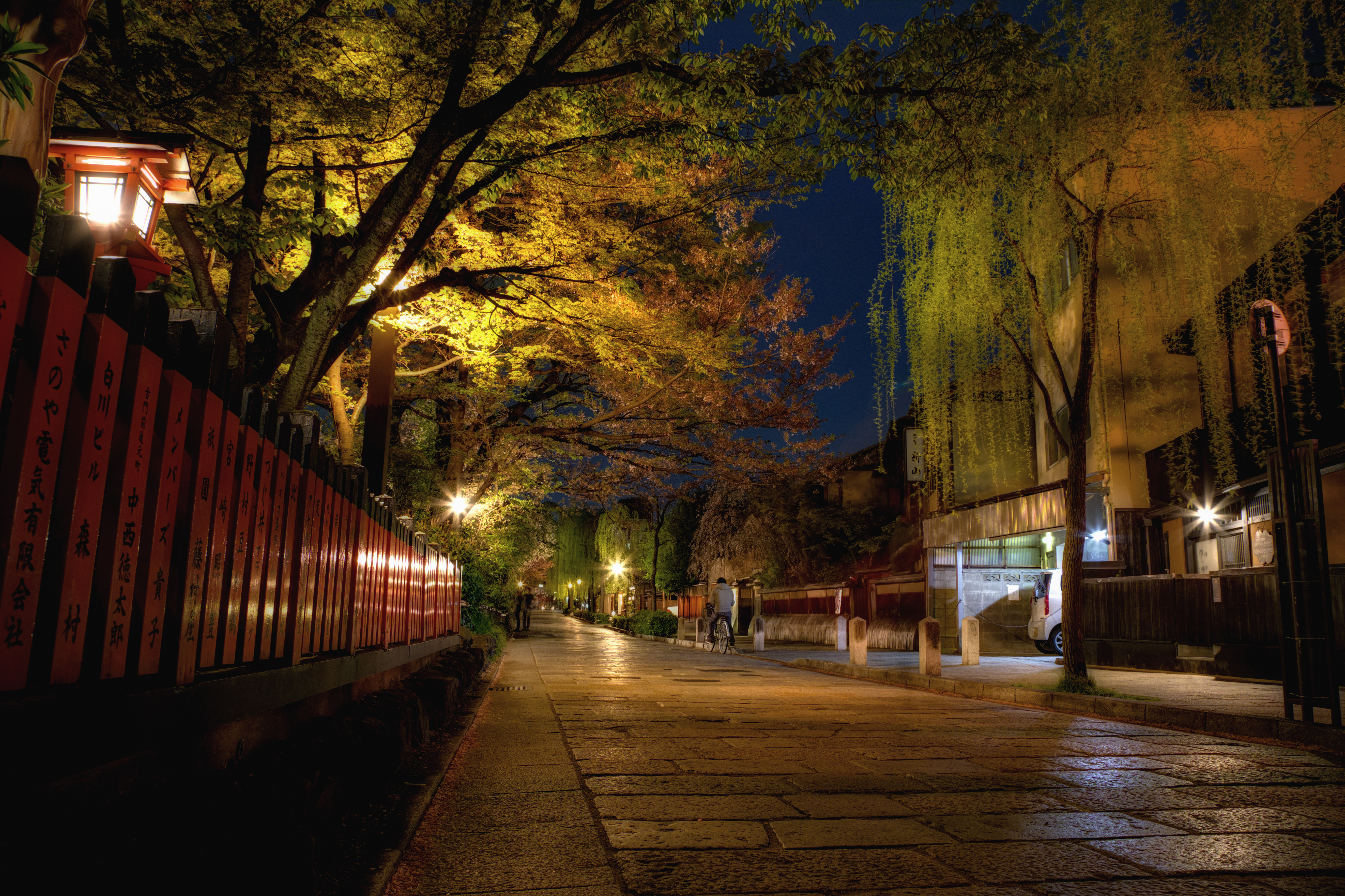 Road through gion photo