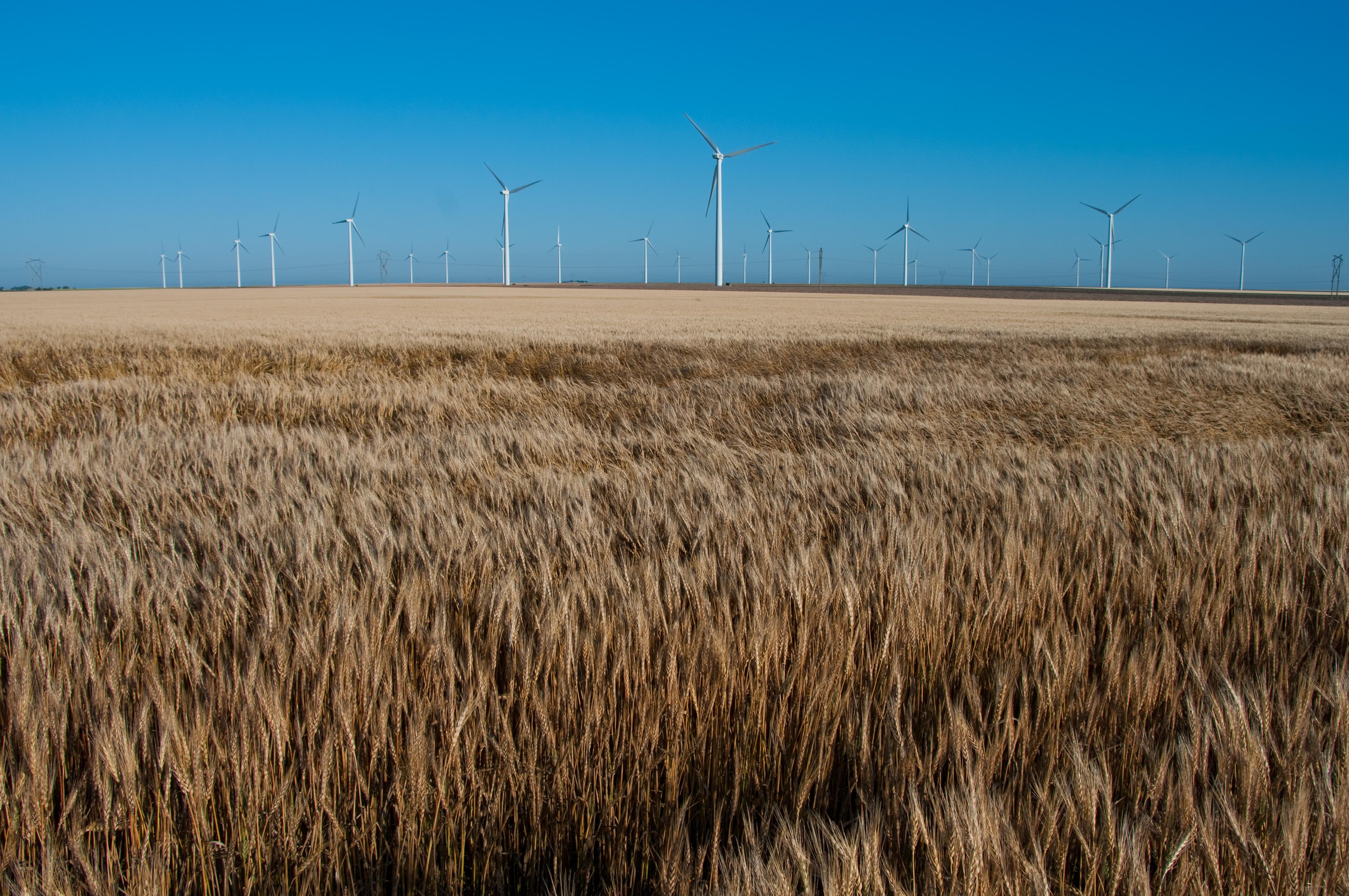 Road Trip: Windmills, Dune, Field, Food, Hay, HQ Photo