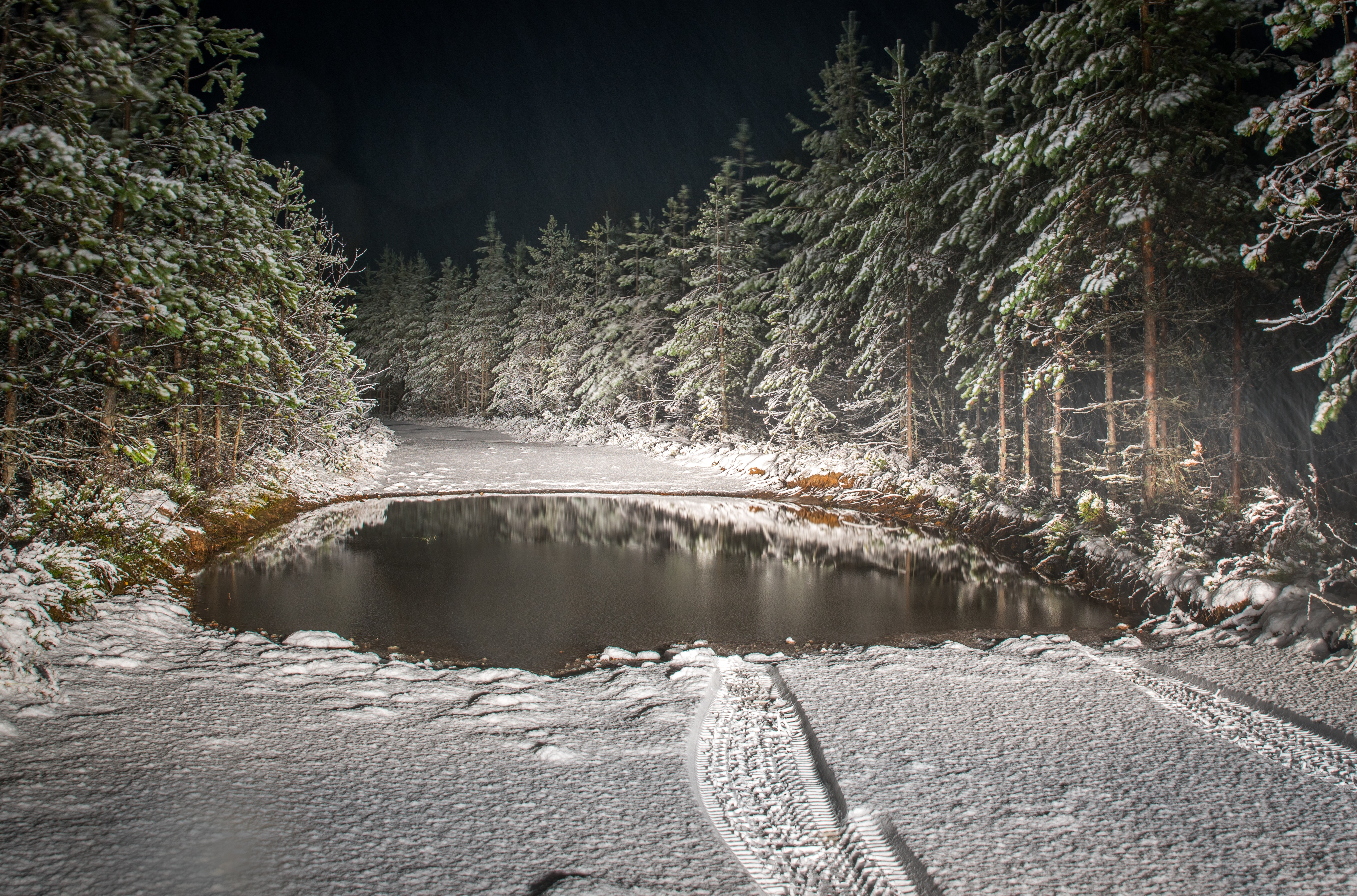 Roadway Filled by Snow Surrounded by Pine Trees Landscape Photography, Reflection, Wood, Winter, Water, HQ Photo