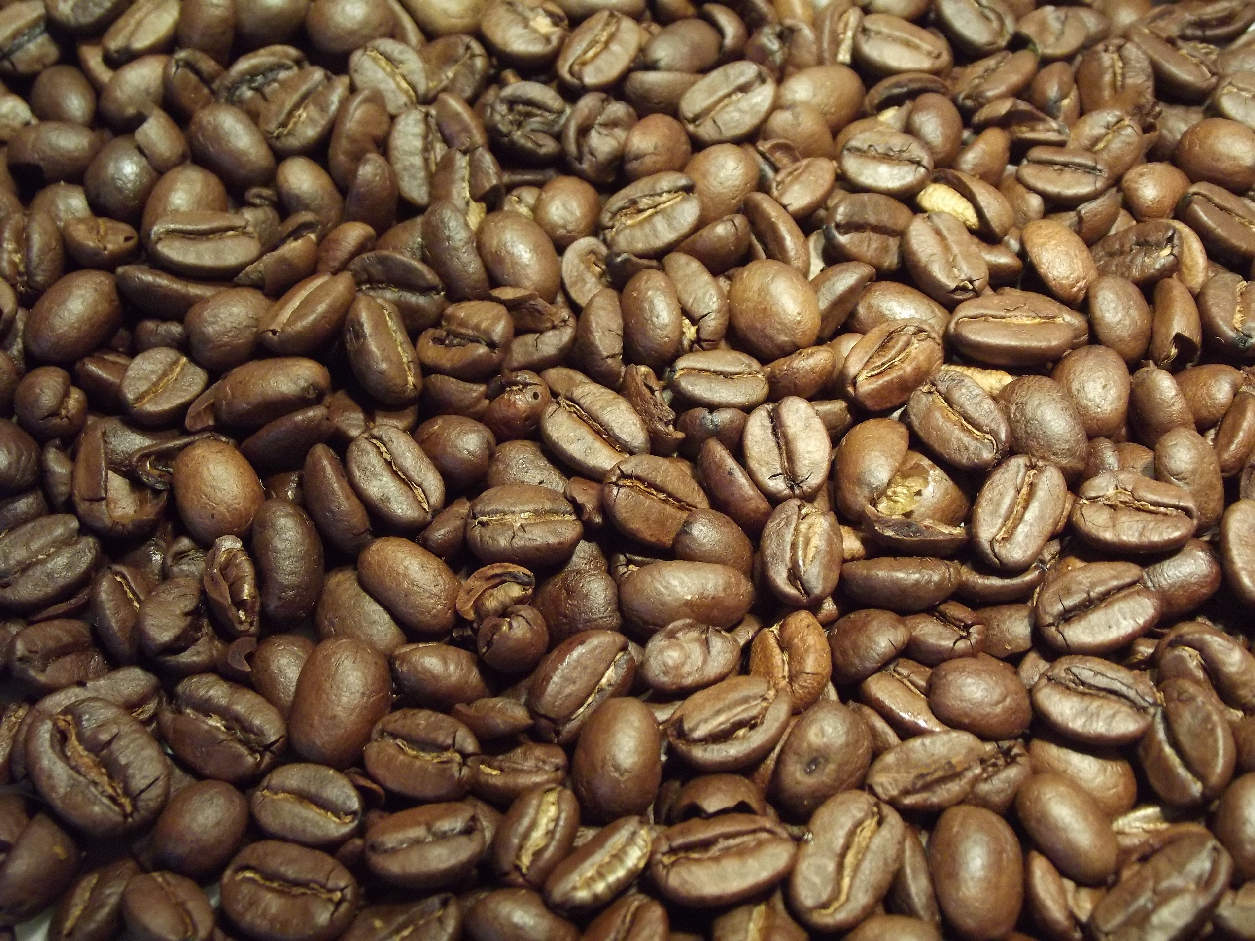 Roasted Coffee Beans, Coffee, Beans, HQ Photo