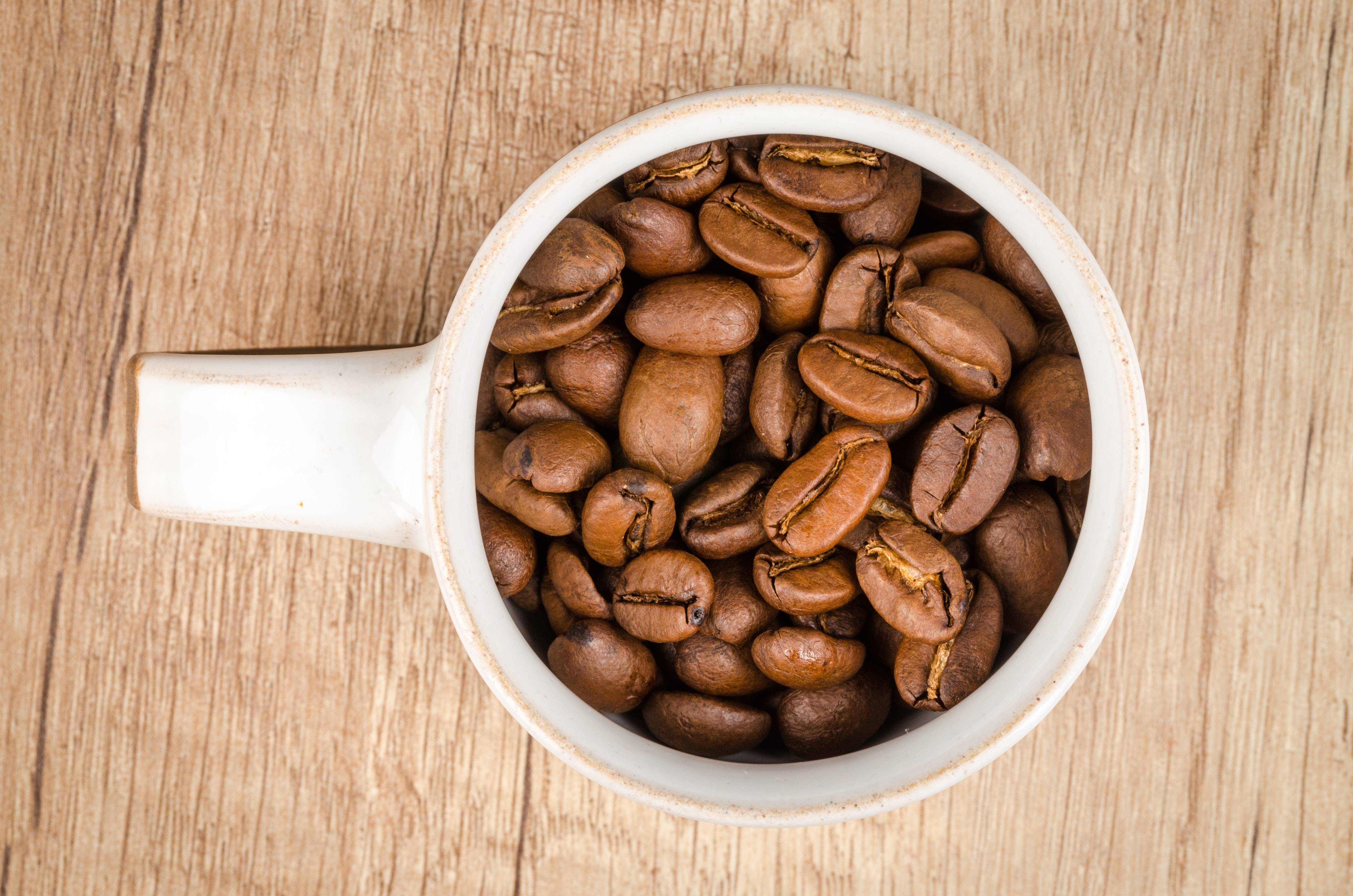 Roasted coffee beans inside white ceramic mug photo