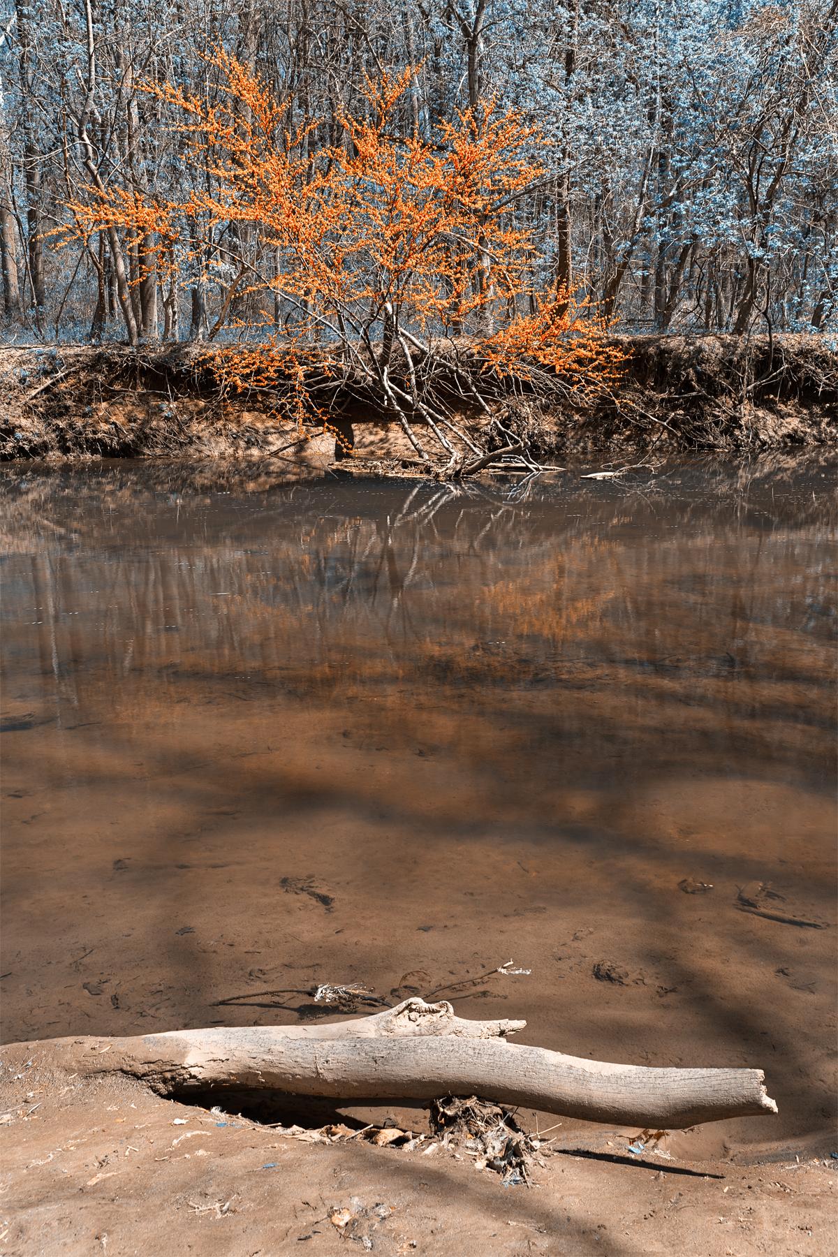 Rock creek stream & foliage - blue & ora photo