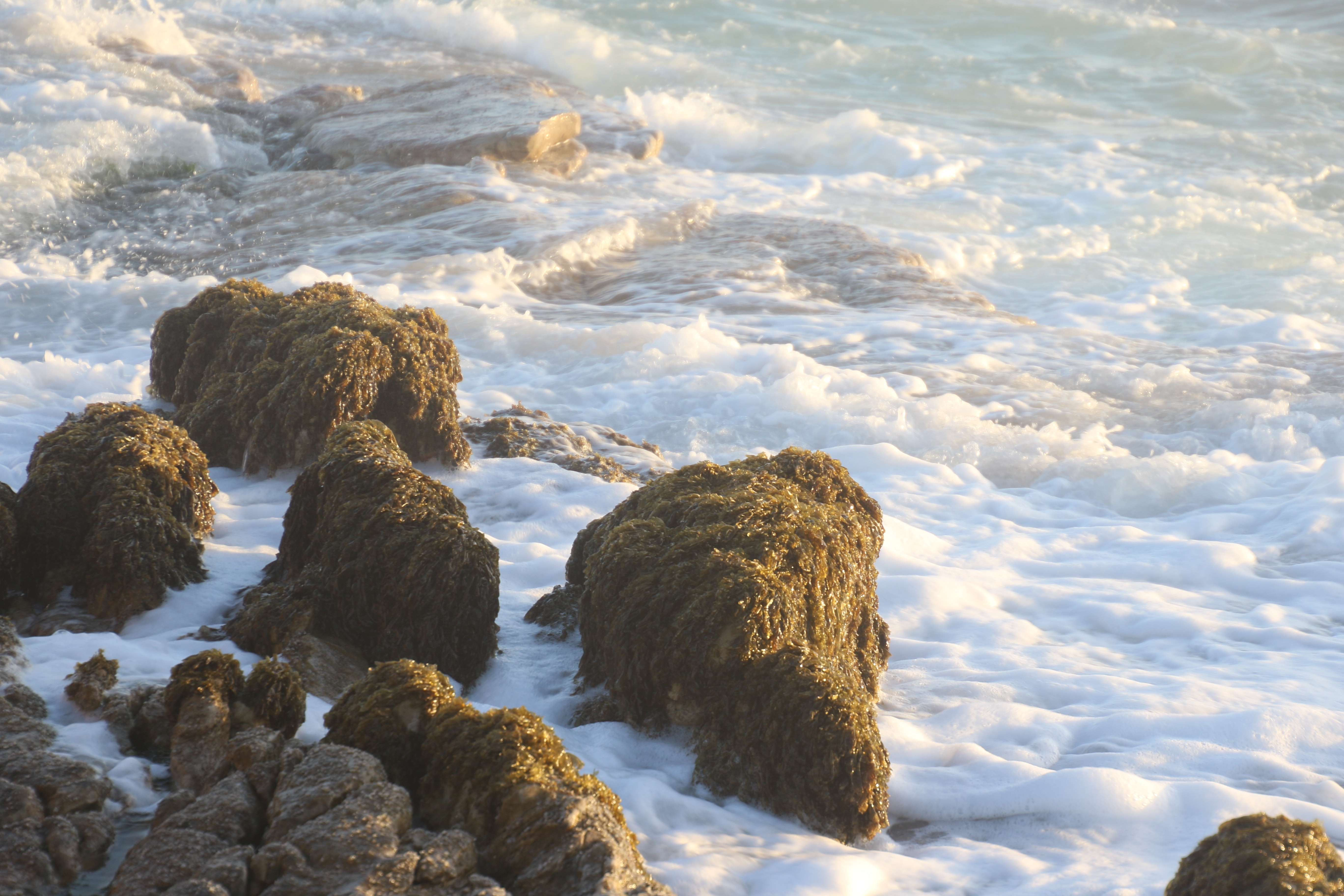Rock formation near body of water photo