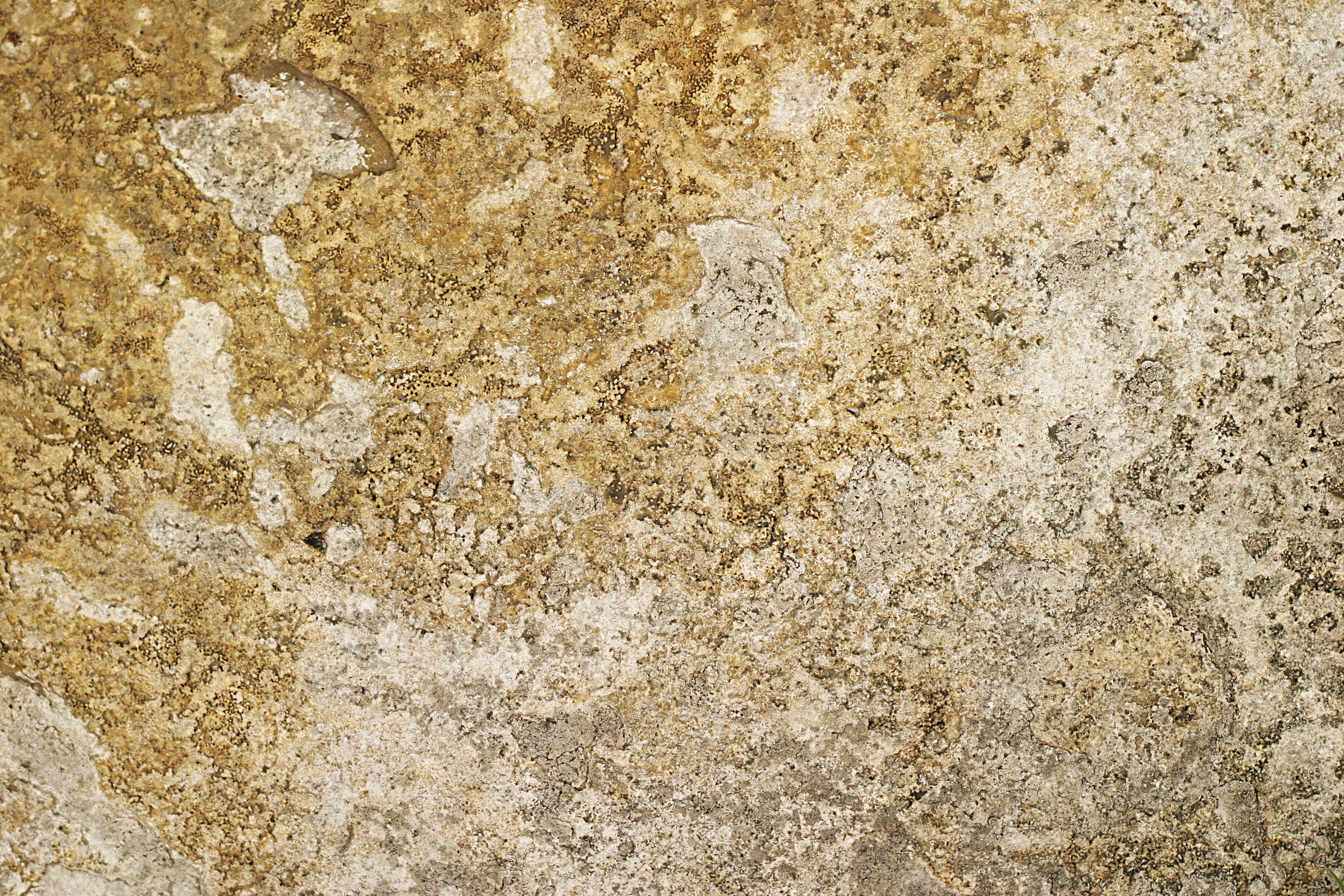Free Yellow Rock Texture Texture - L+T