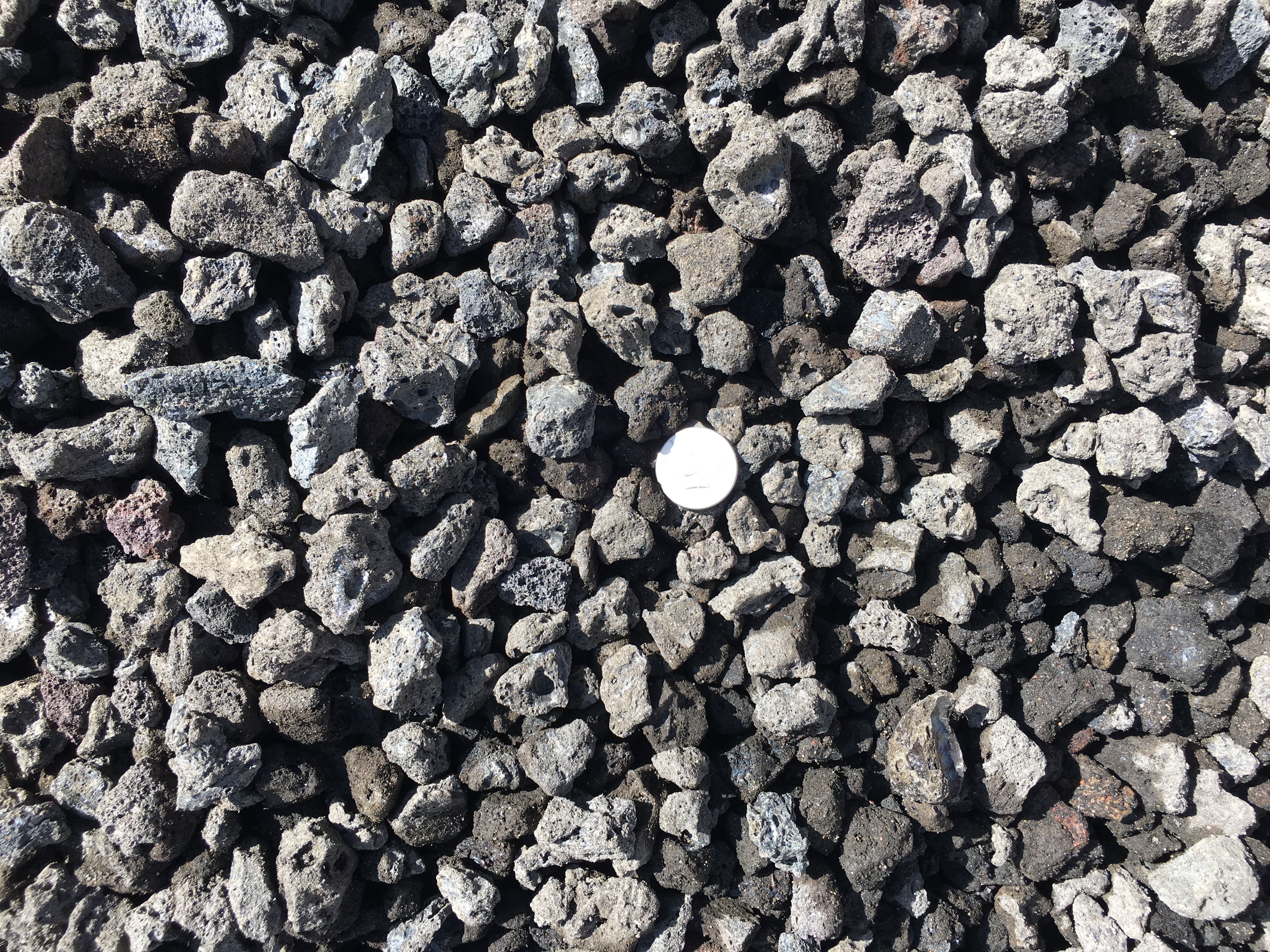 Index of /wp-content/gallery/river-rocks-ground-cover