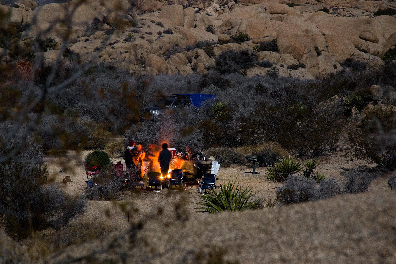 Jumbo Rocks Campground - Joshua Tree National Park (U.S. National ...