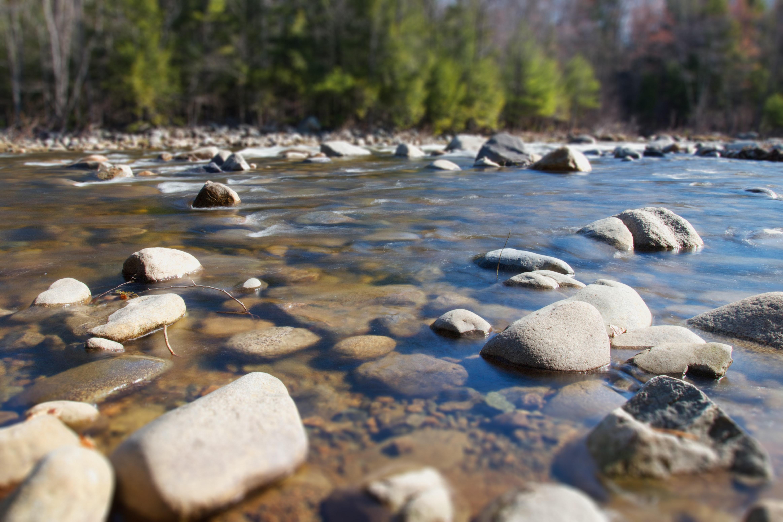 Free stock photo of nature, river, rocks