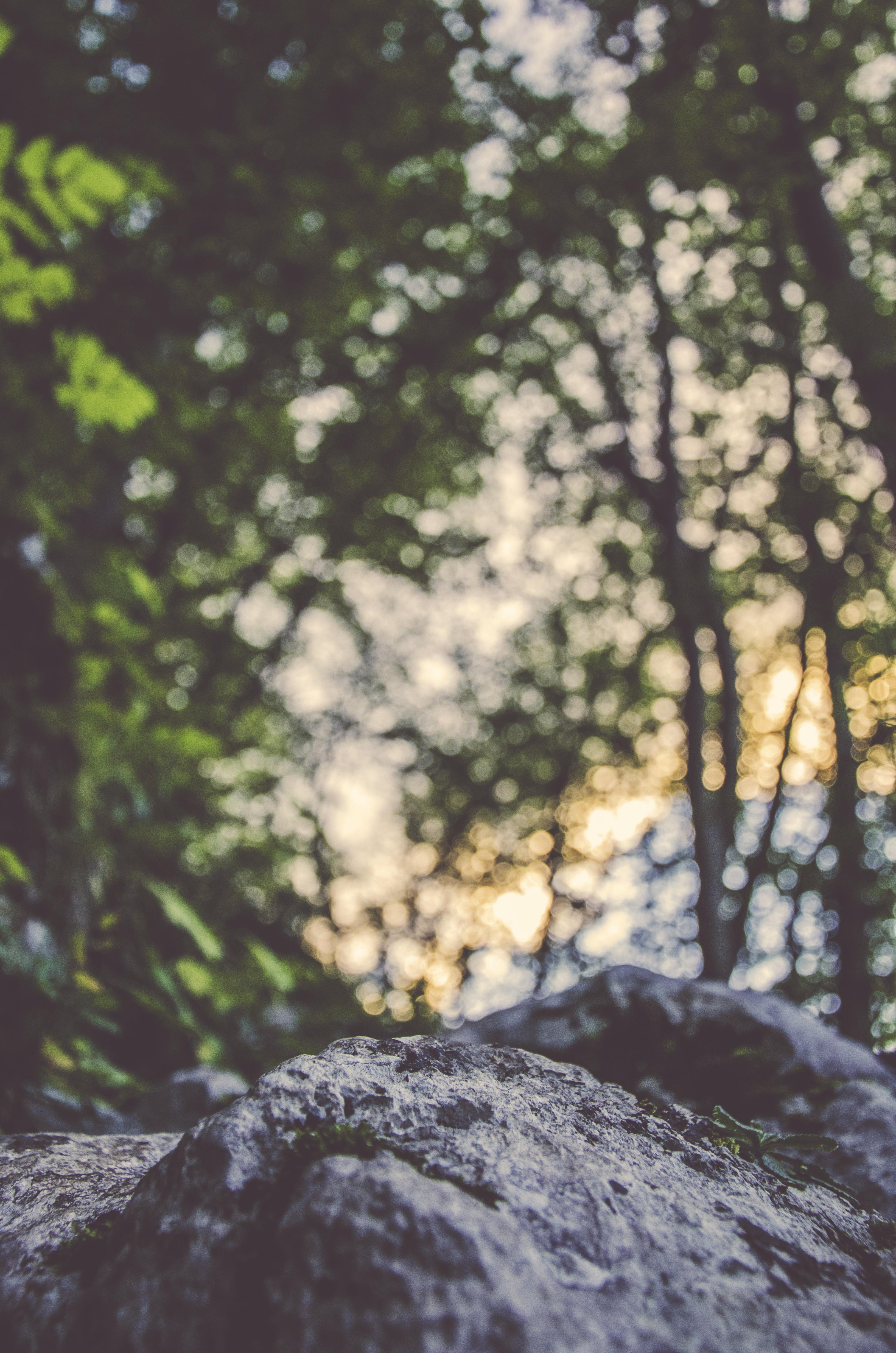 Rocky, Green, Landscape, Nature, Rock, HQ Photo
