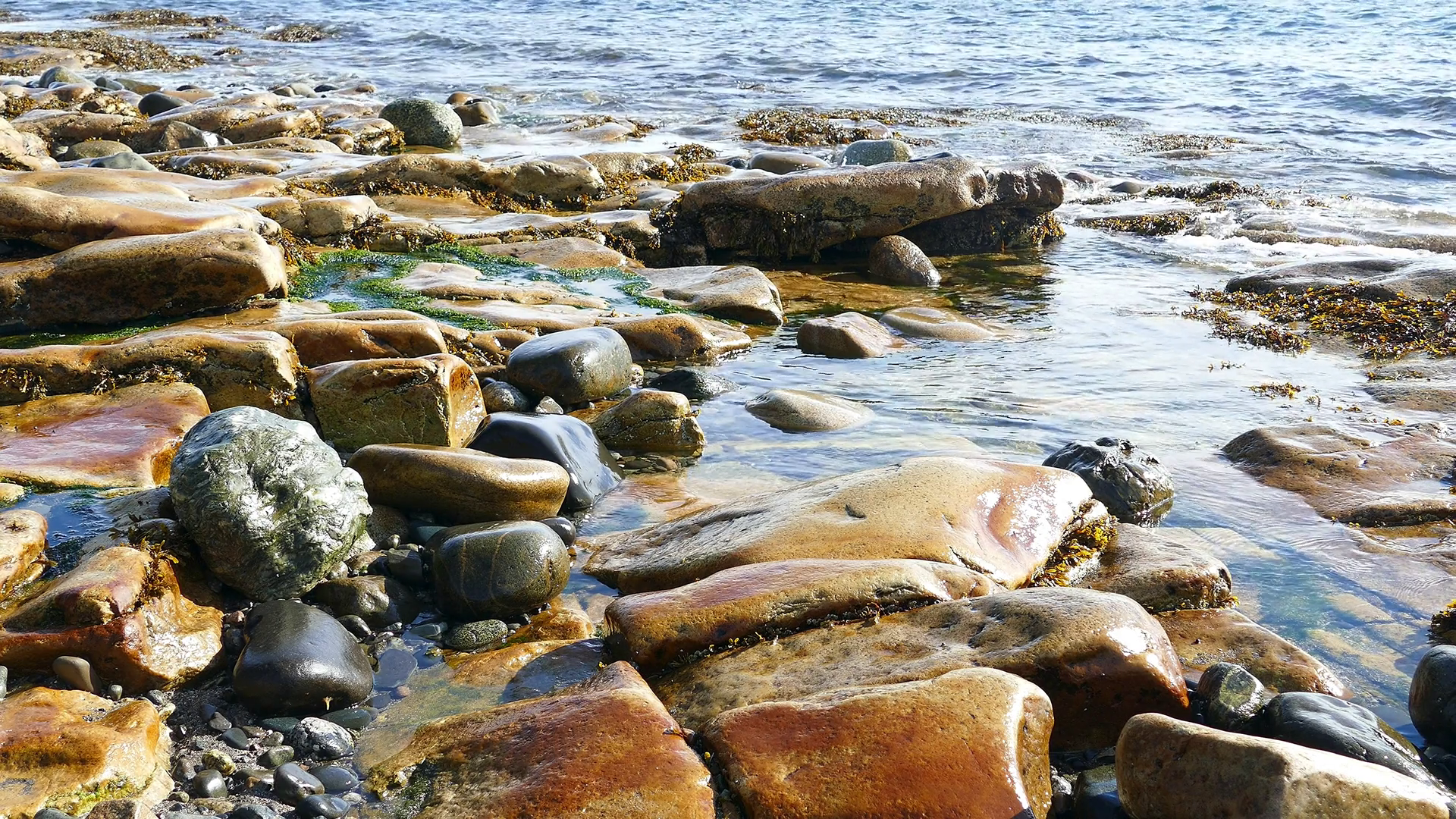 Rocky coastline in Maine Stock Video Footage - Videoblocks