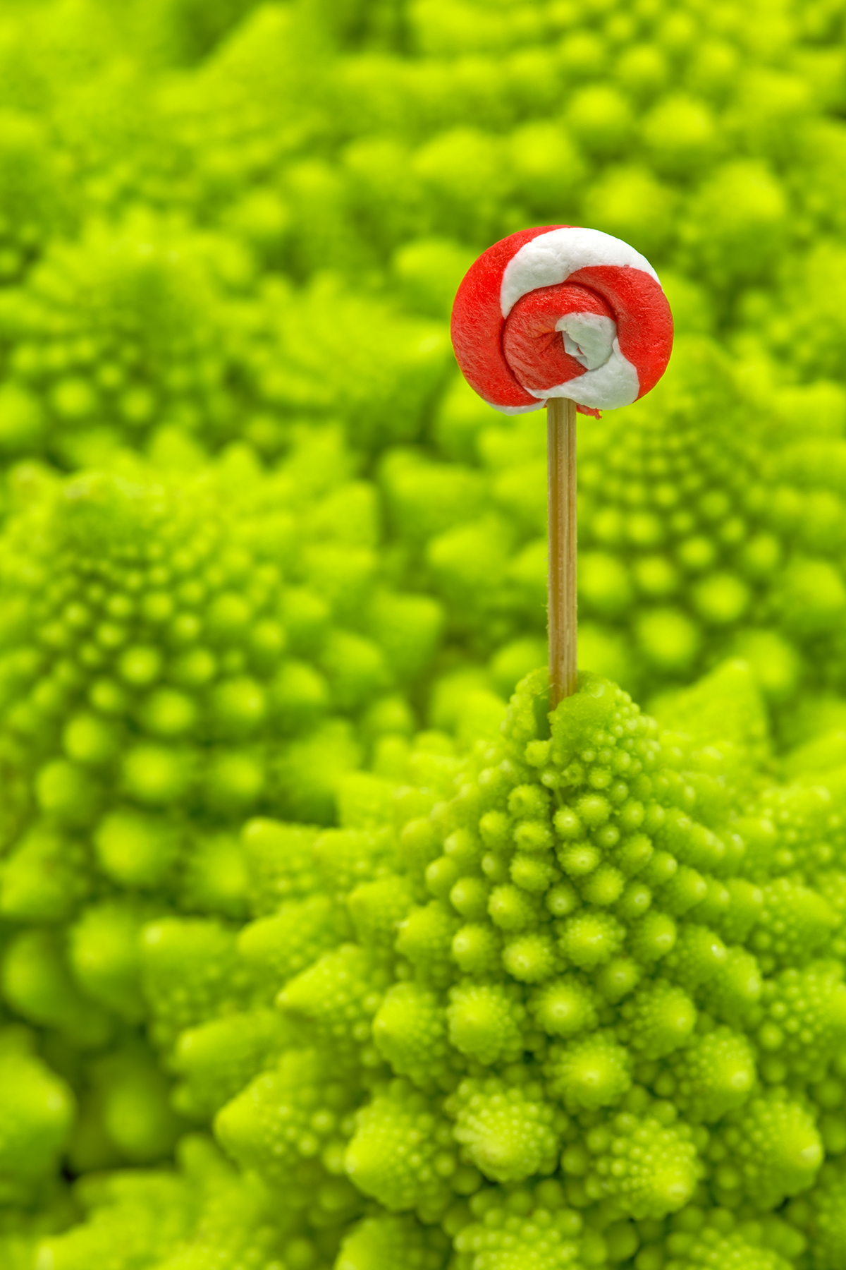 Romanesco Lollipop - HDR, Abstract, Psychedelic, Sci, Savoury, HQ Photo