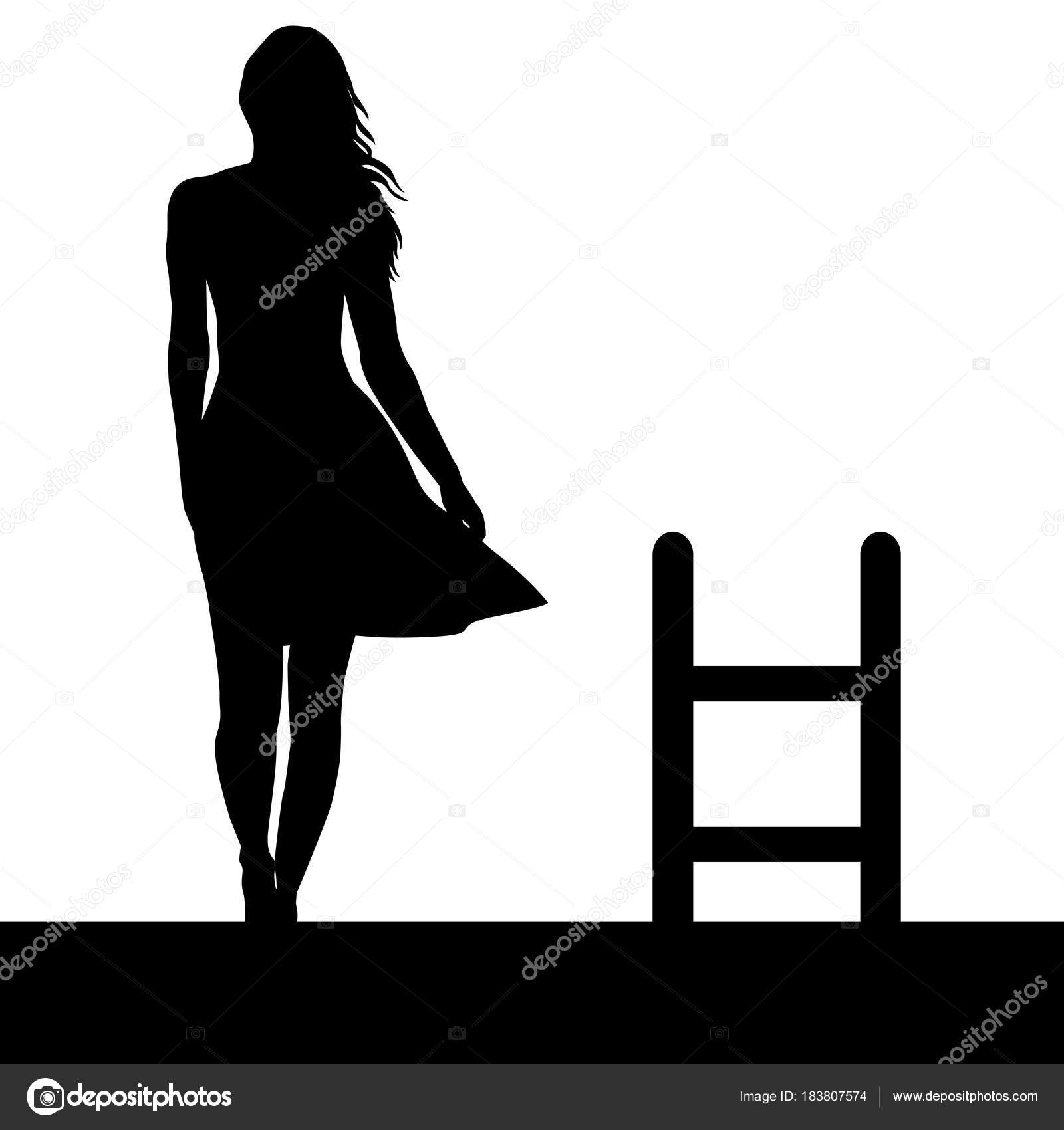 Woman silhouette with ladder on the roof — Stock Vector © hibrida13 ...