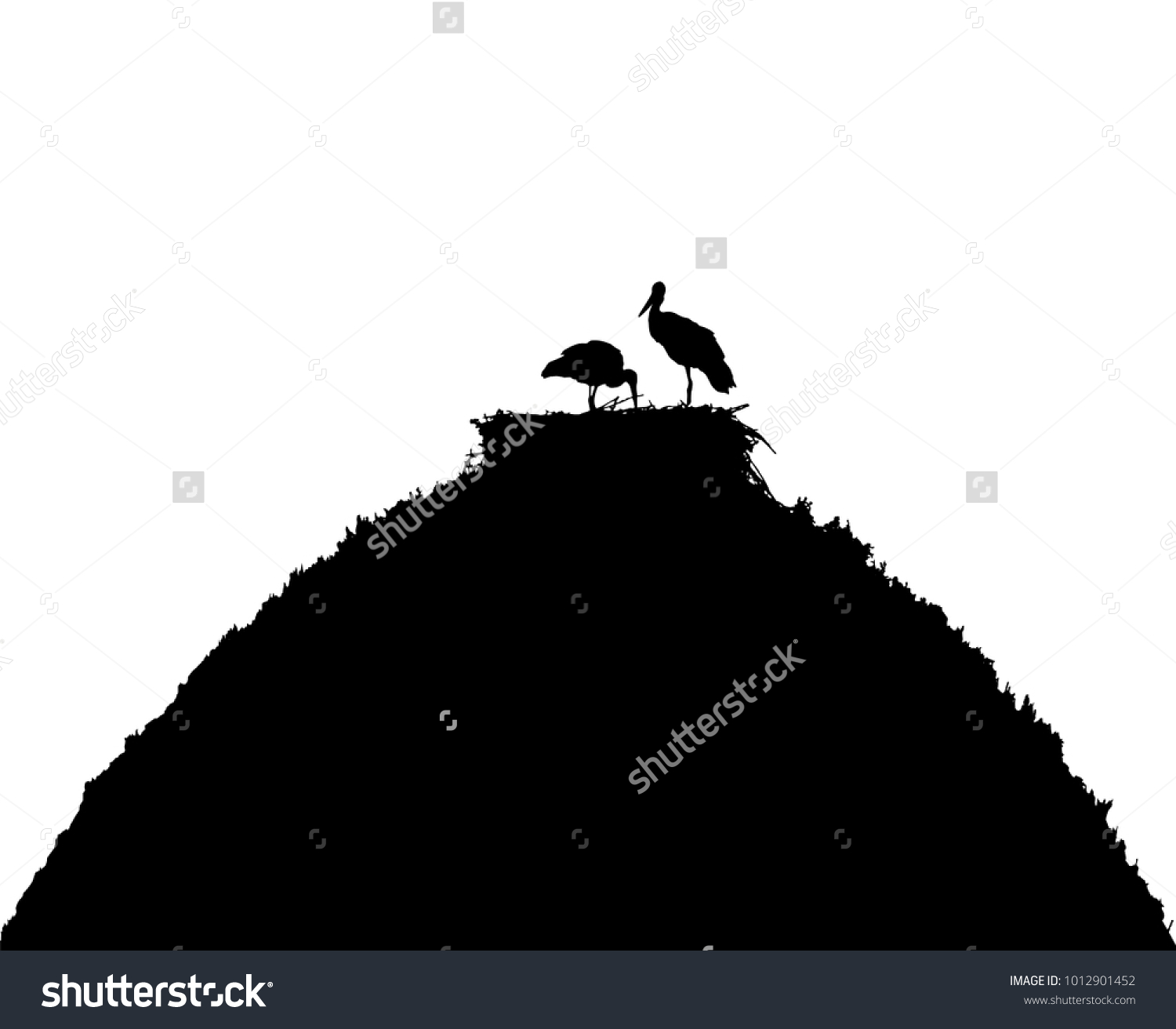 White Storks Nest On Roof Silhouette Stock Photo (Photo, Vector ...