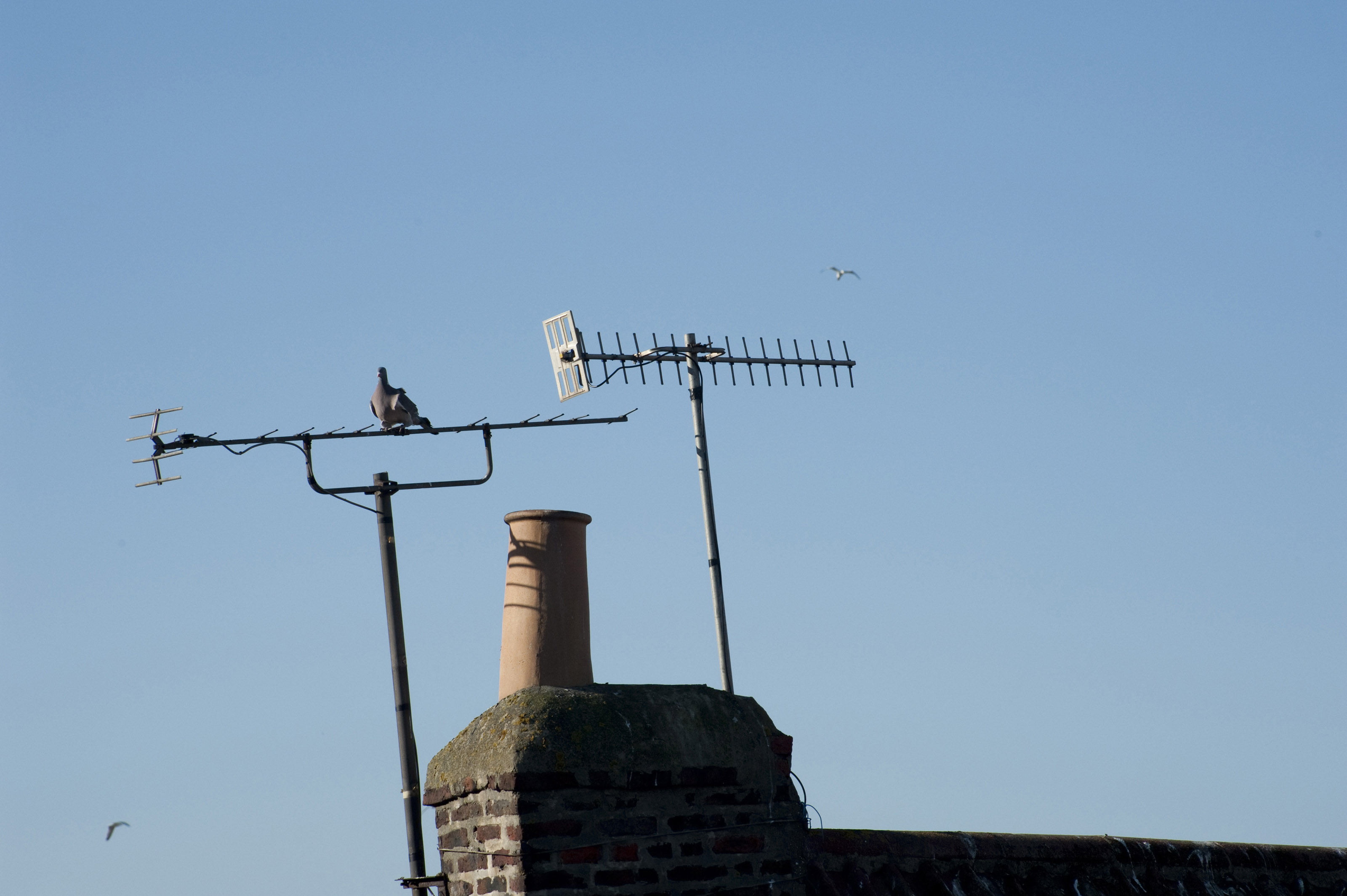 Chimney and TV antennas-4048 | Stockarch Free Stock Photos