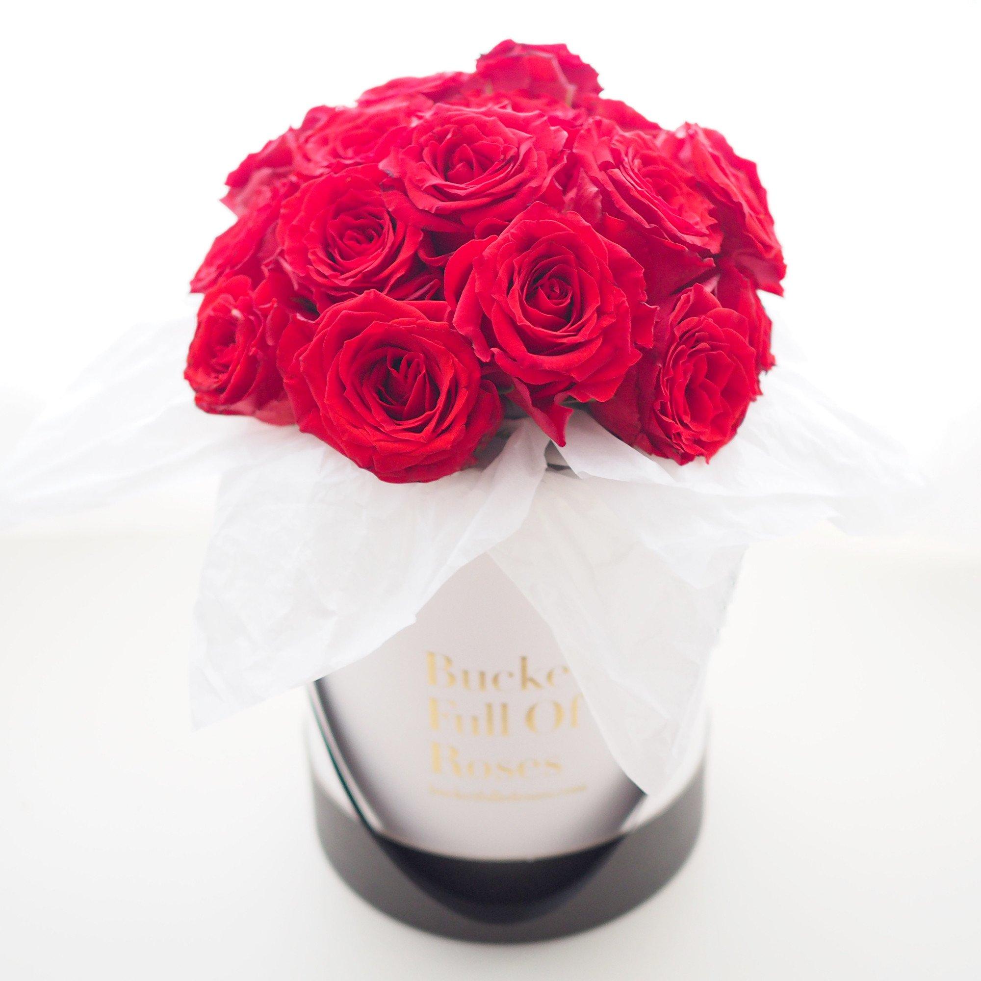 Rose bucket photo