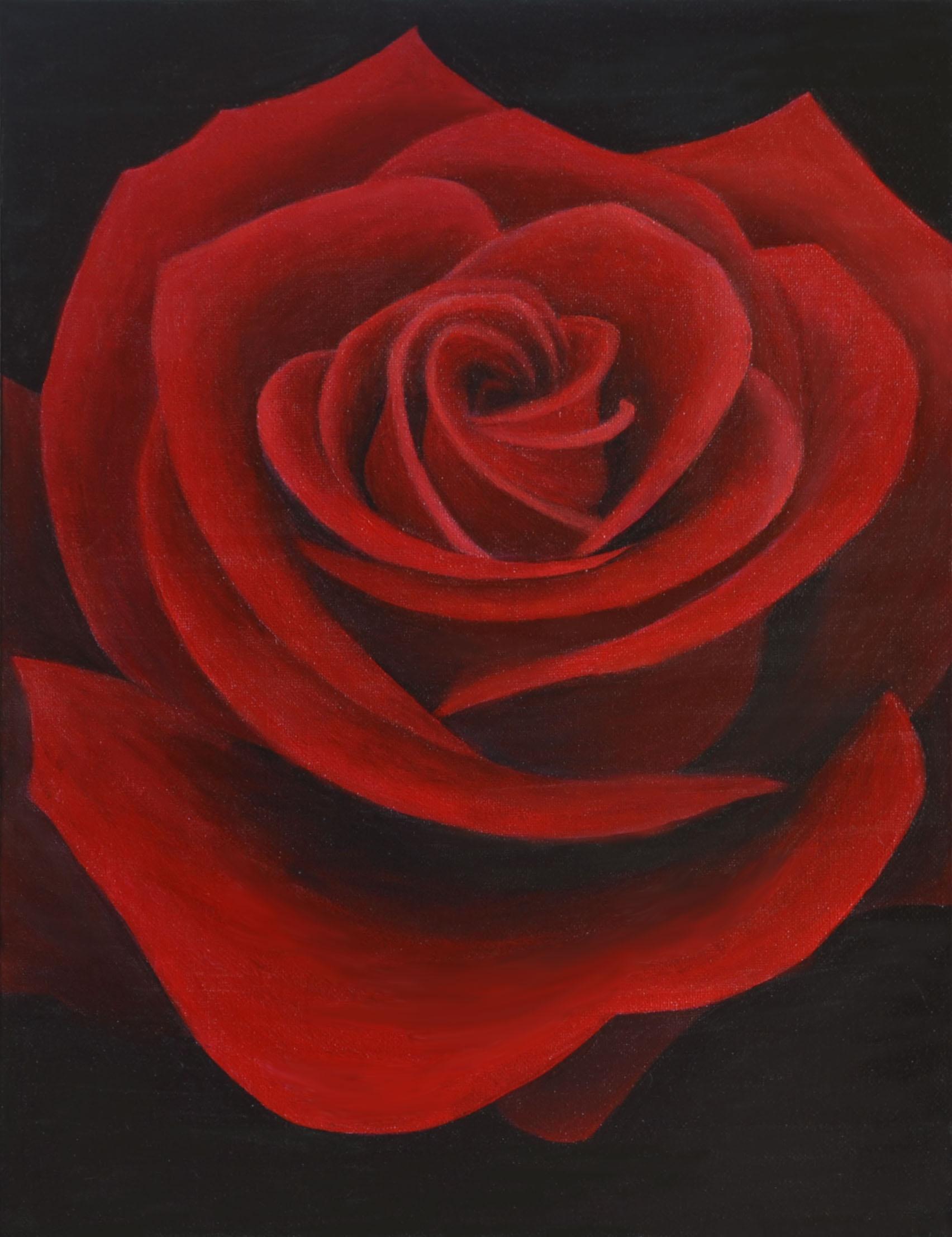 Rose painting photo