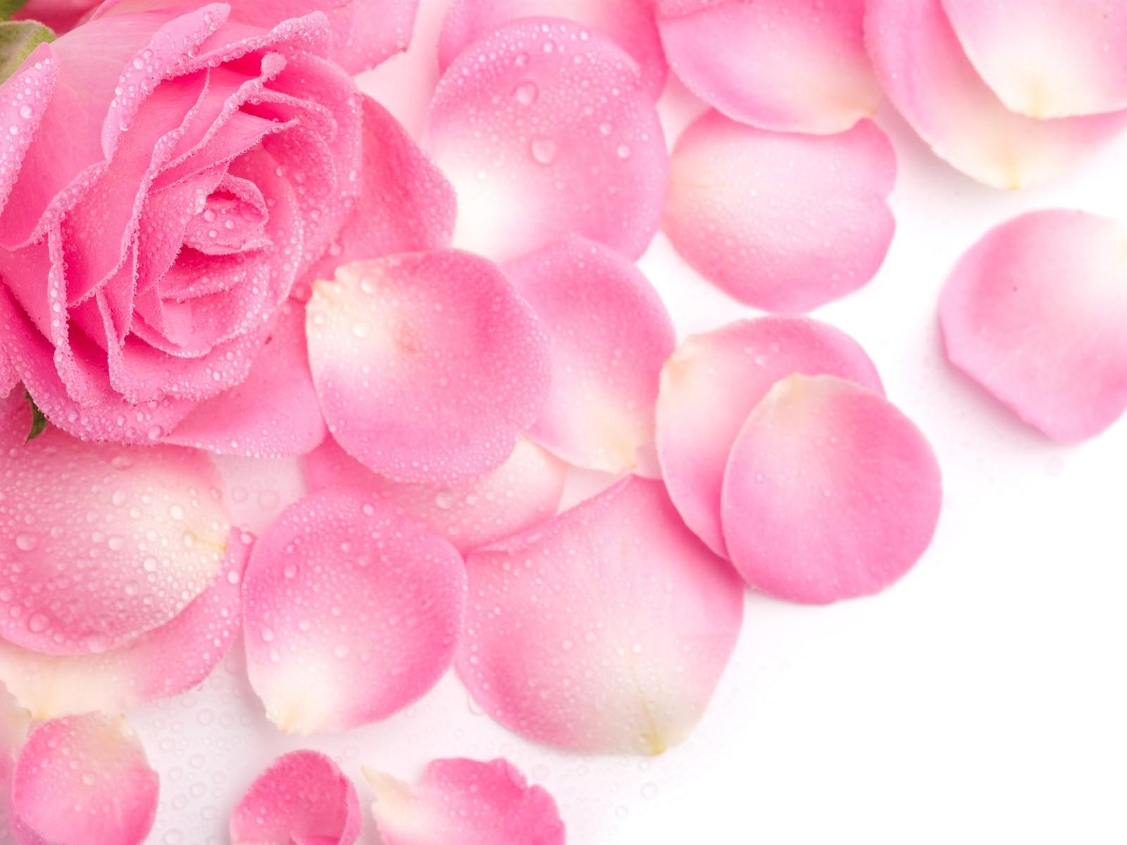 petals- Fragrant