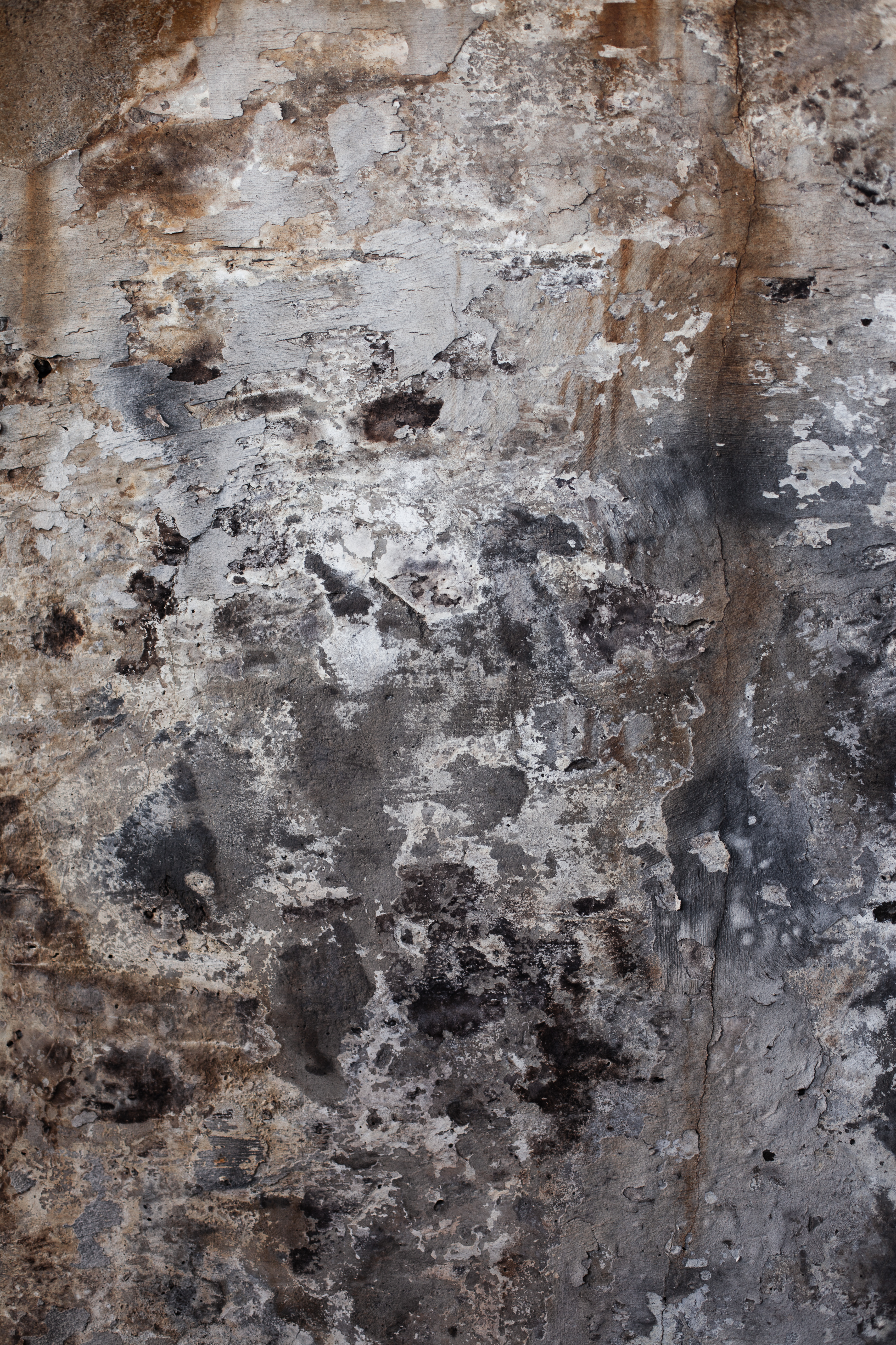 Rotten Grunge Surface, Grungy, Wall, Vintage, Texture, HQ Photo