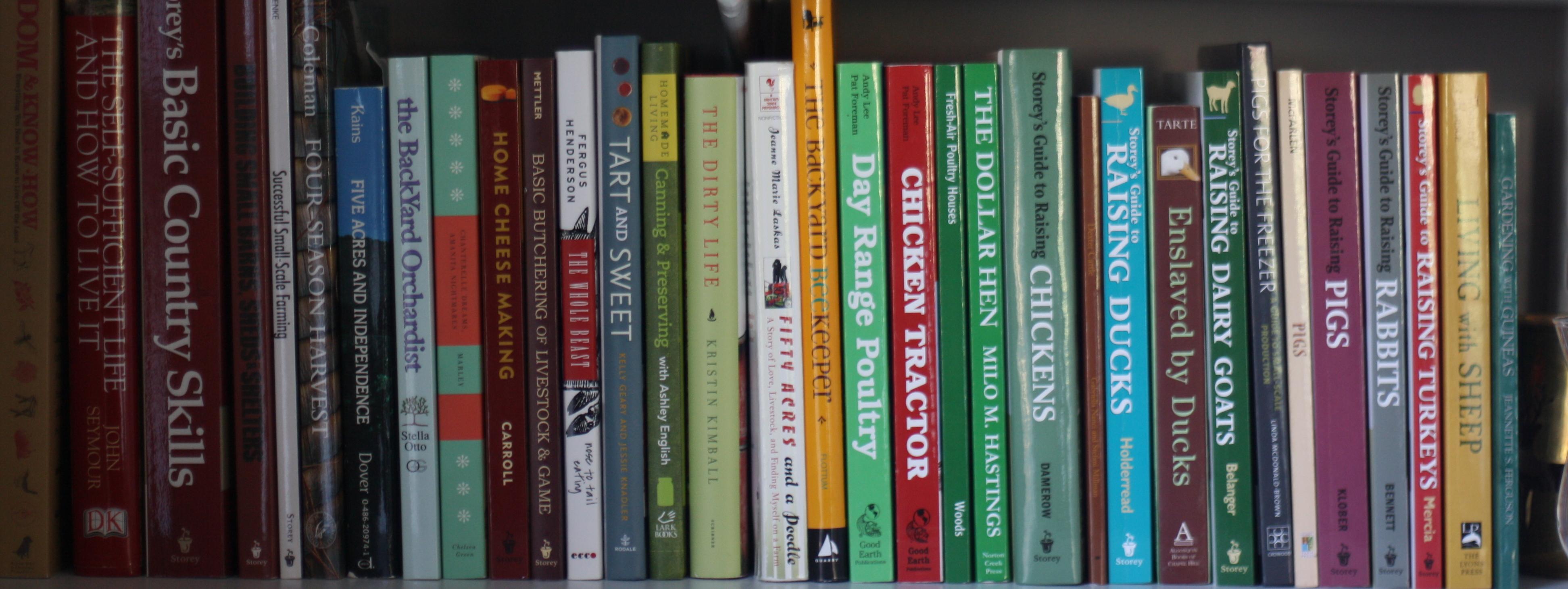 Row of books photo