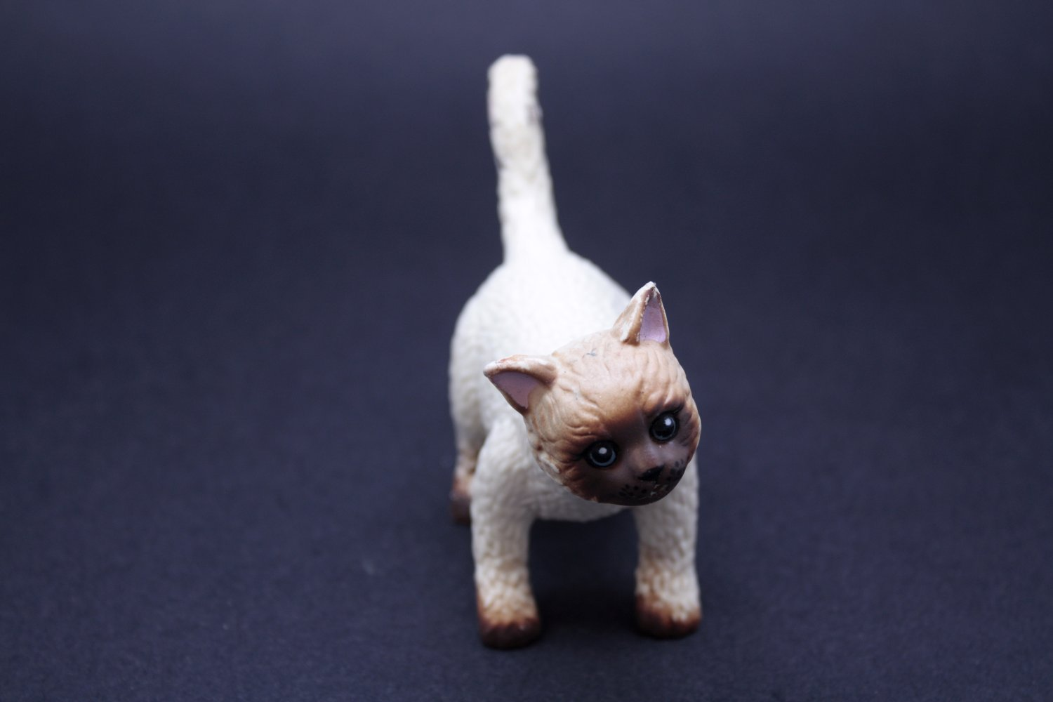 Rubber toy cat, Animal, Relaxation, Hygiene, Isolated, HQ Photo