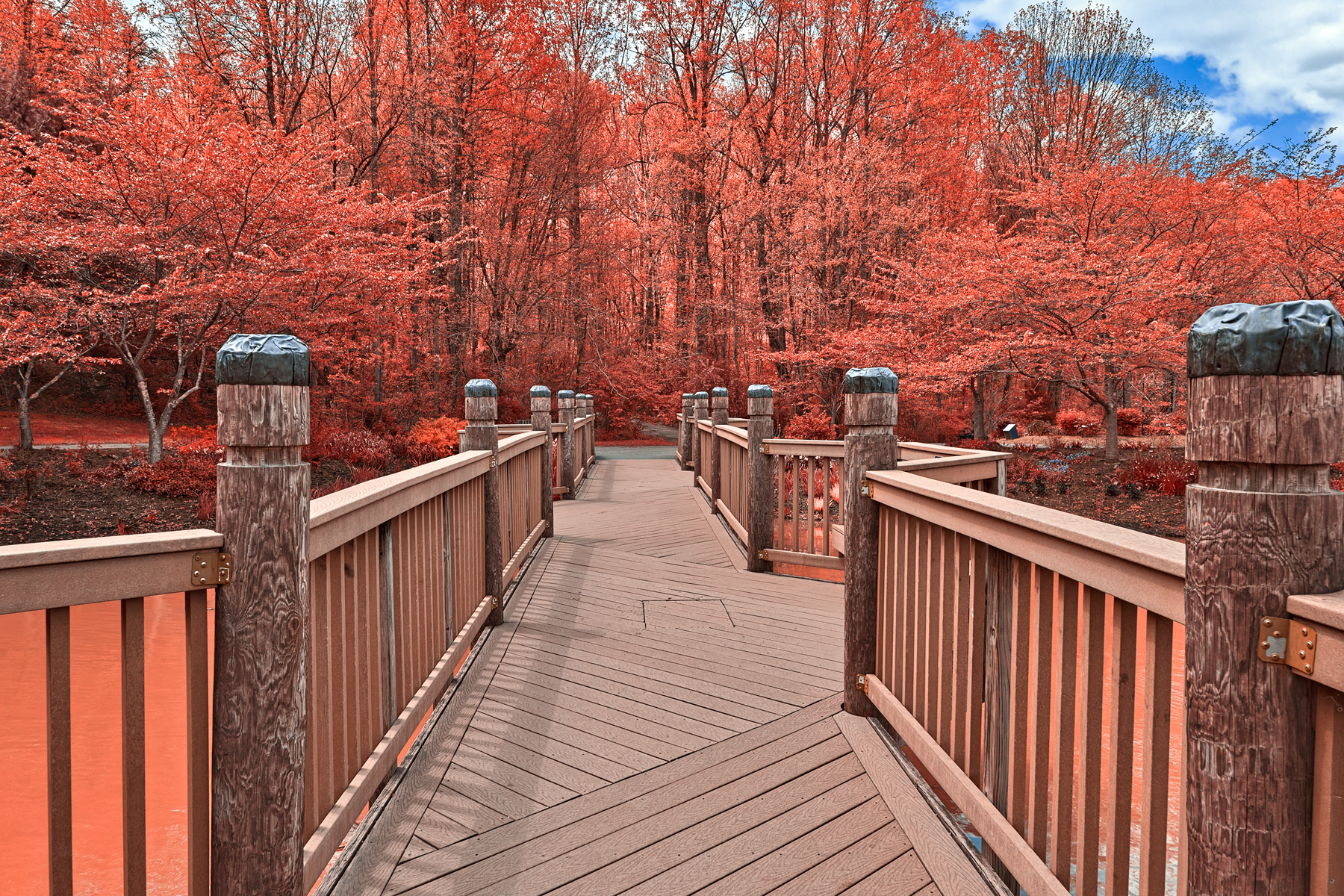 Ruby meadowlark bridge - hdr photo