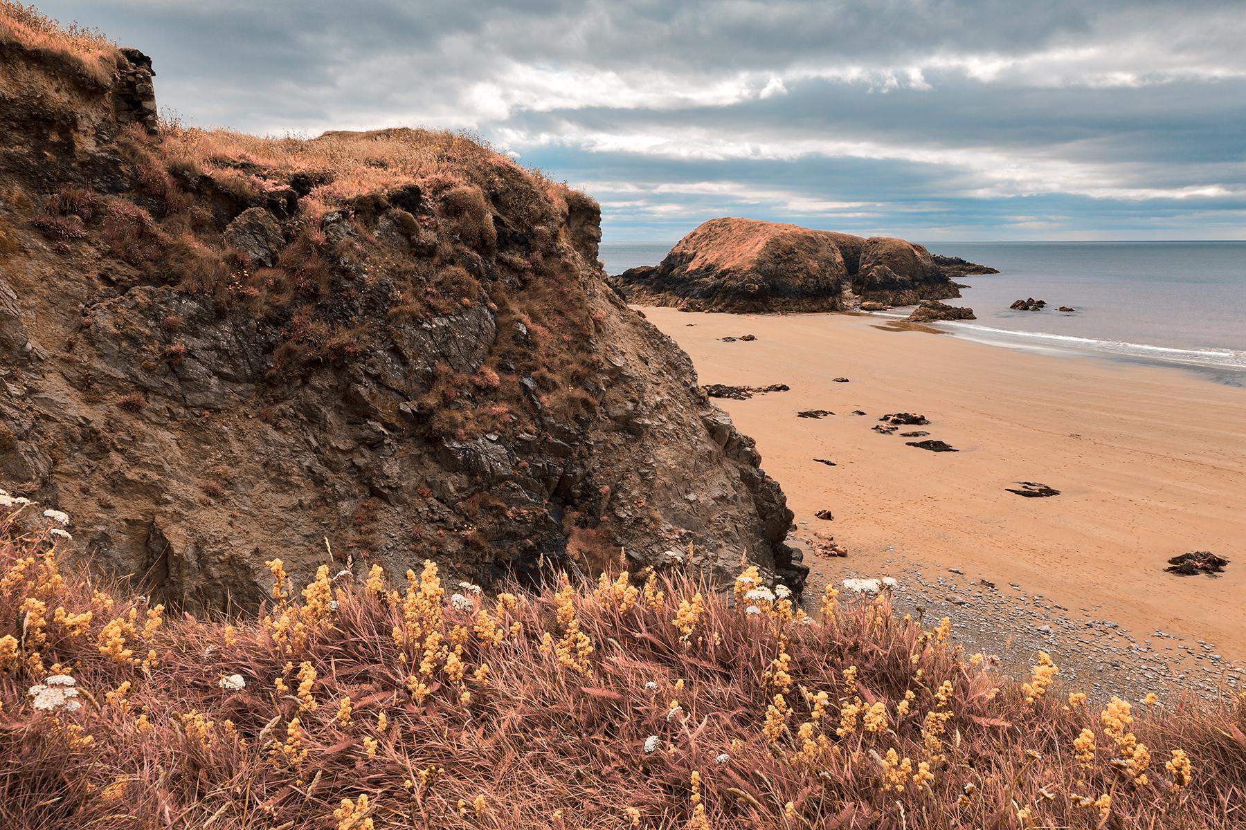 Rugged Irish Wildflower Coast - Pastel Fantasy HDR, Angle, Pristine, Scenic, Scenery, HQ Photo