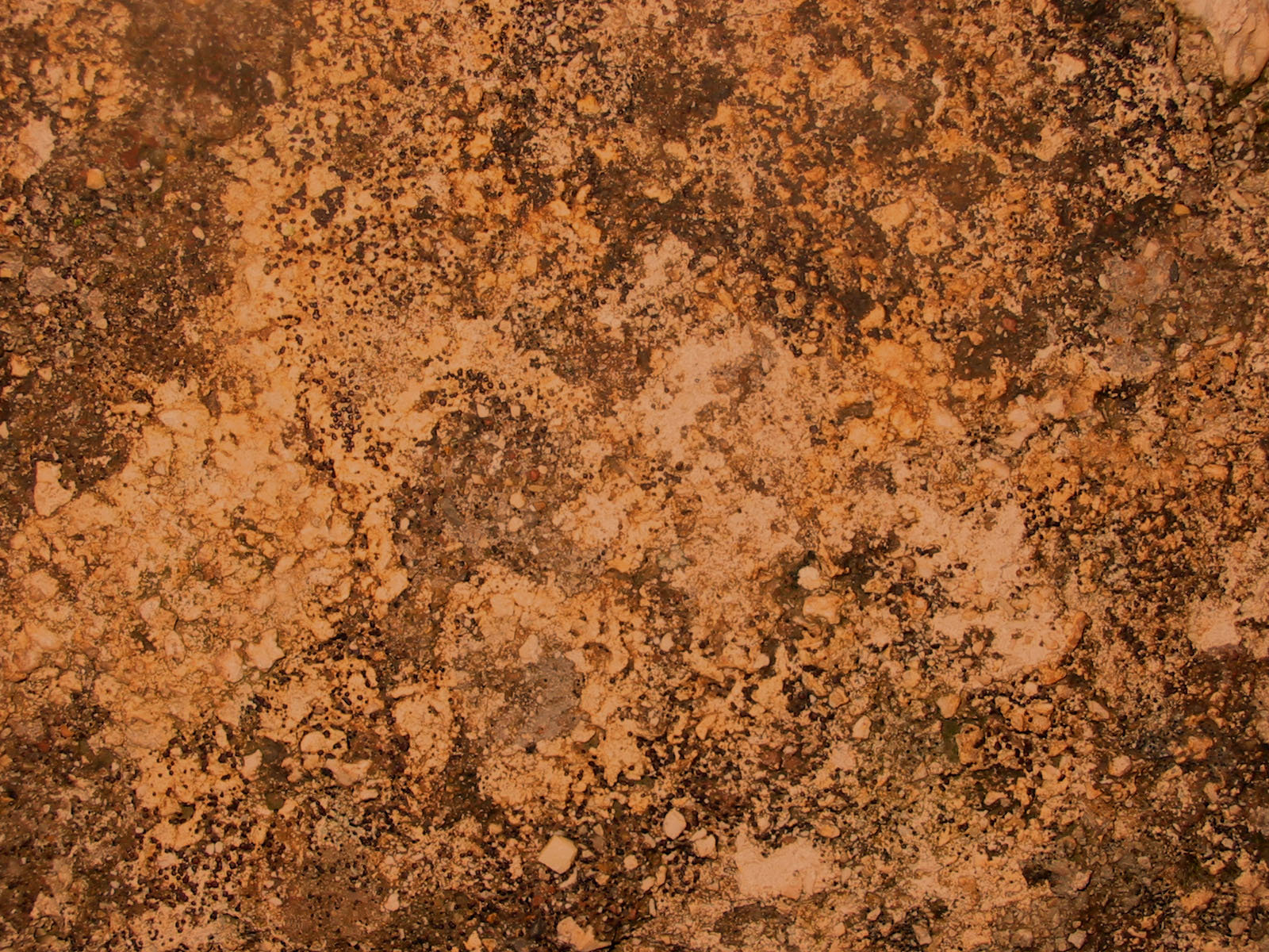 cowboy rust texture stock by - Ideal.vistalist.co