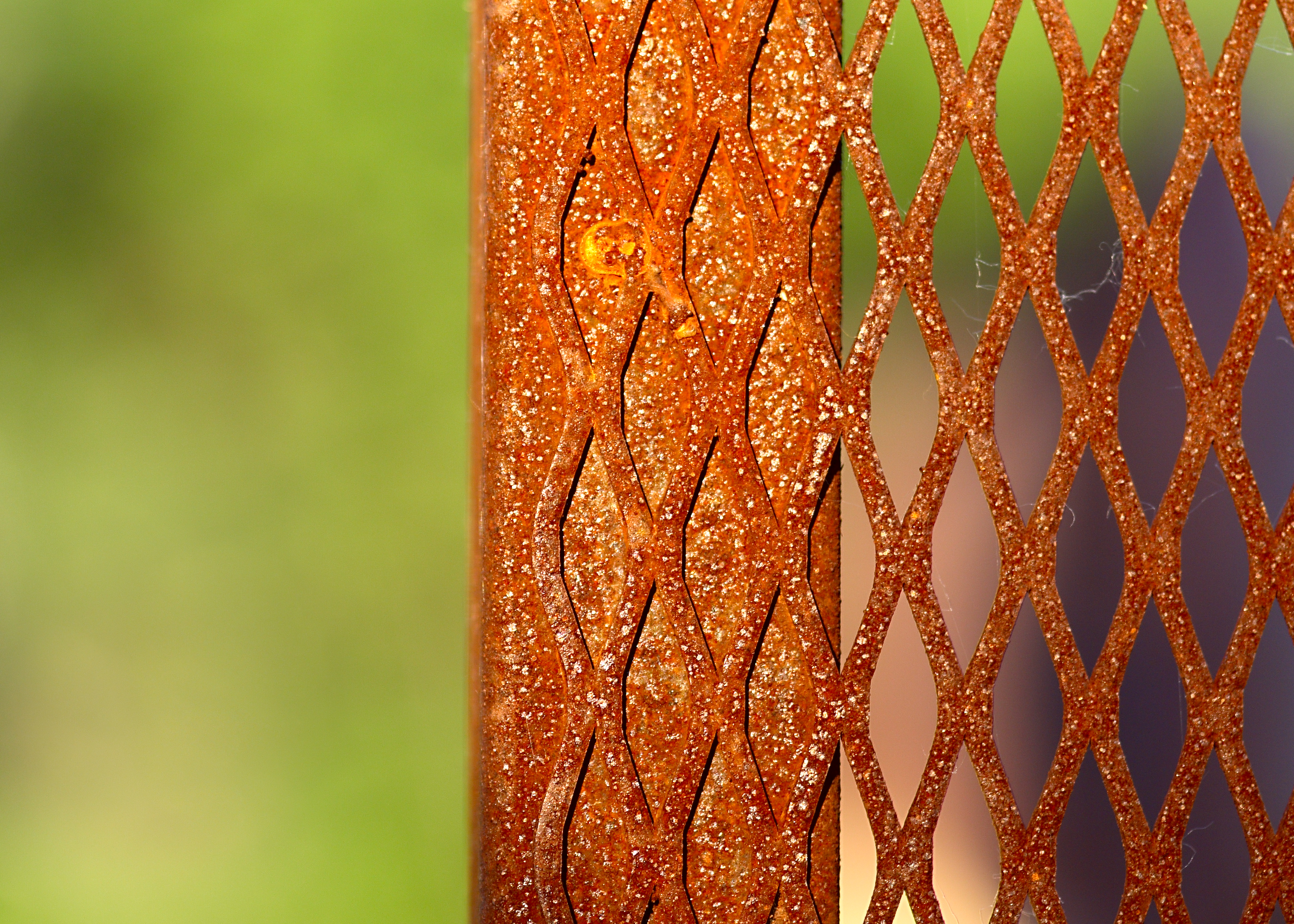 Rusted fence photo