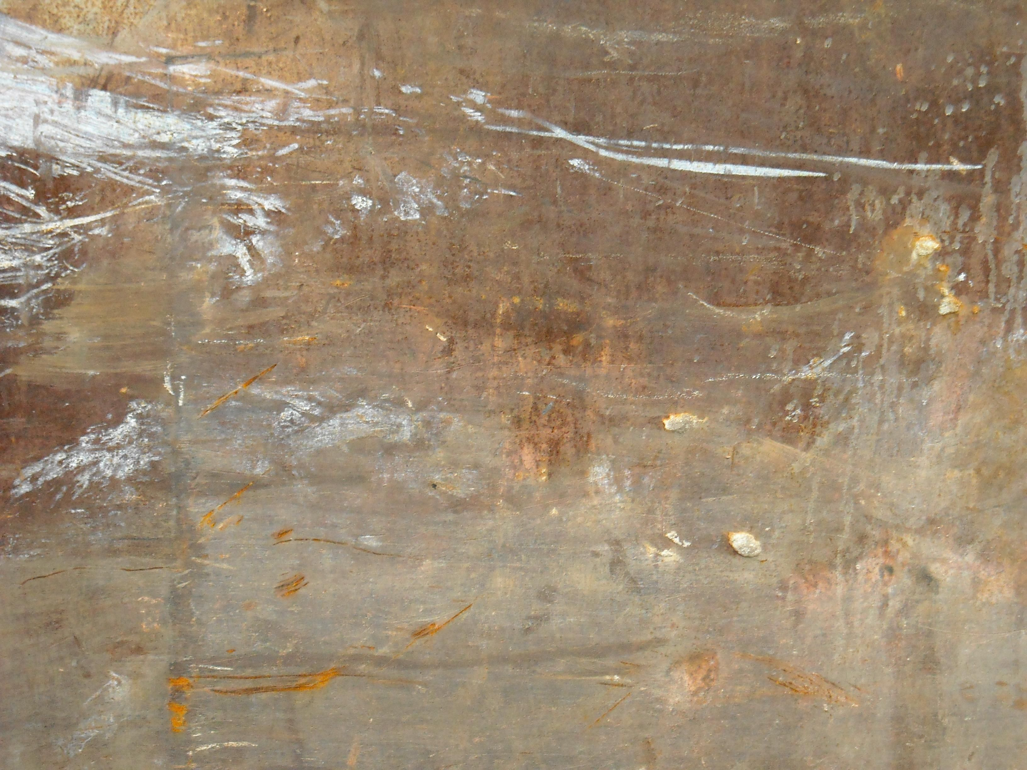 Free picture: rusted metal, texture