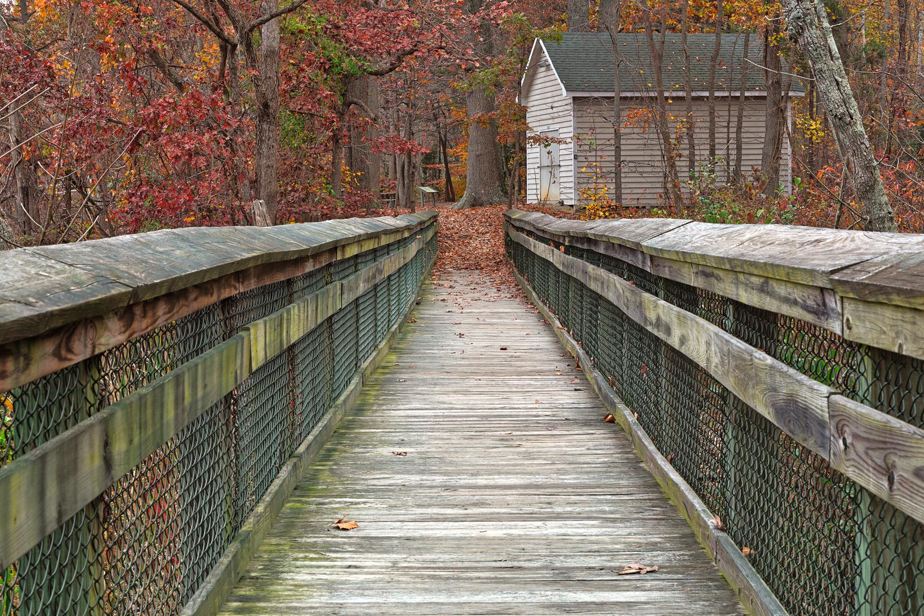 Rustic autumn boardwalk - hdr photo