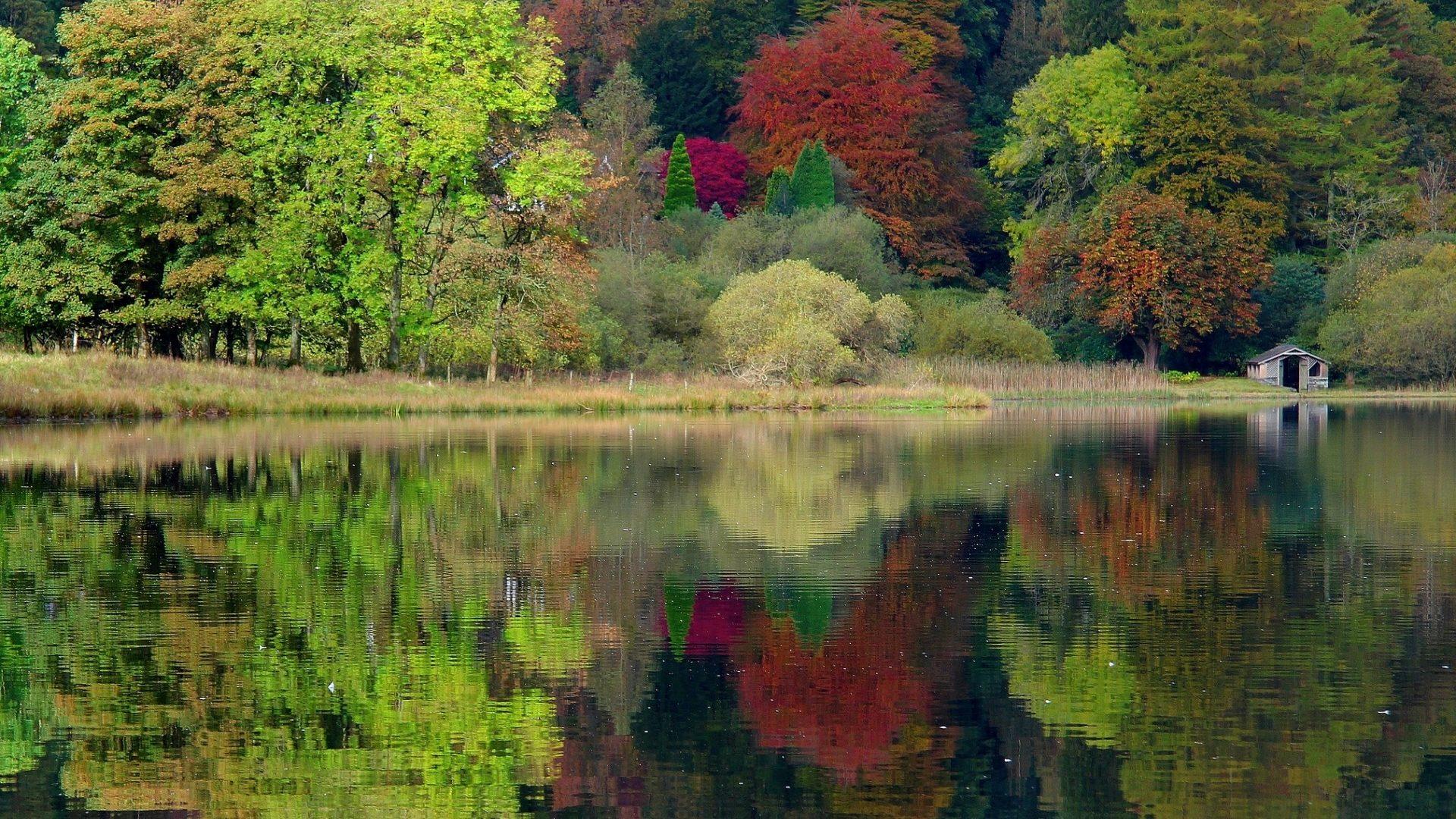 Rustic autumn lake photo
