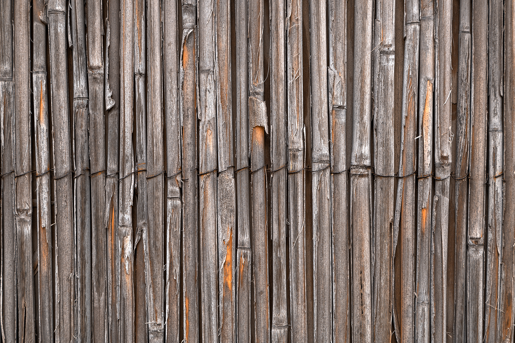 Rustic Bamboo Wall - HDR Texture, Age, Rustic, Stalks, Stalk, HQ Photo