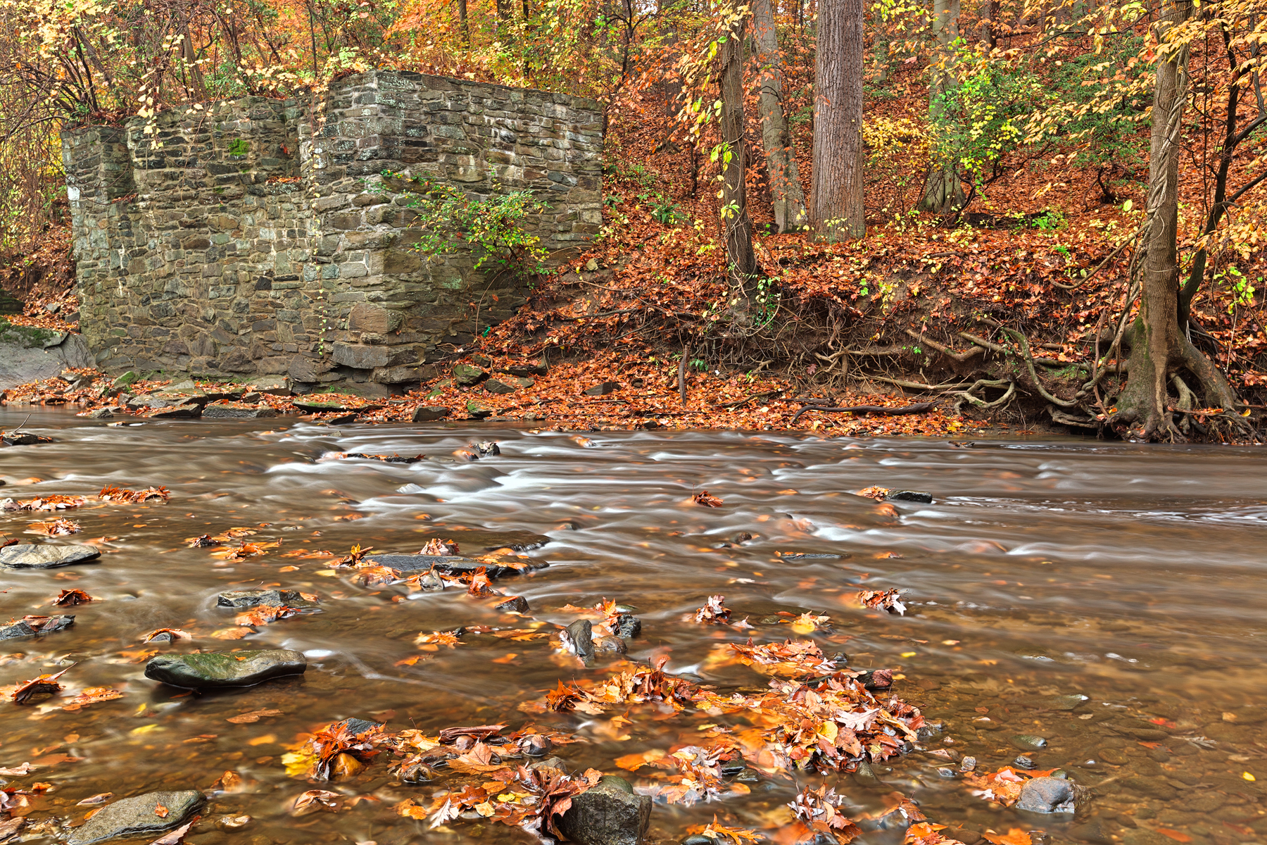 Rustic Fall Creek - HDR, Age, Park, Scenic, Scenery, HQ Photo