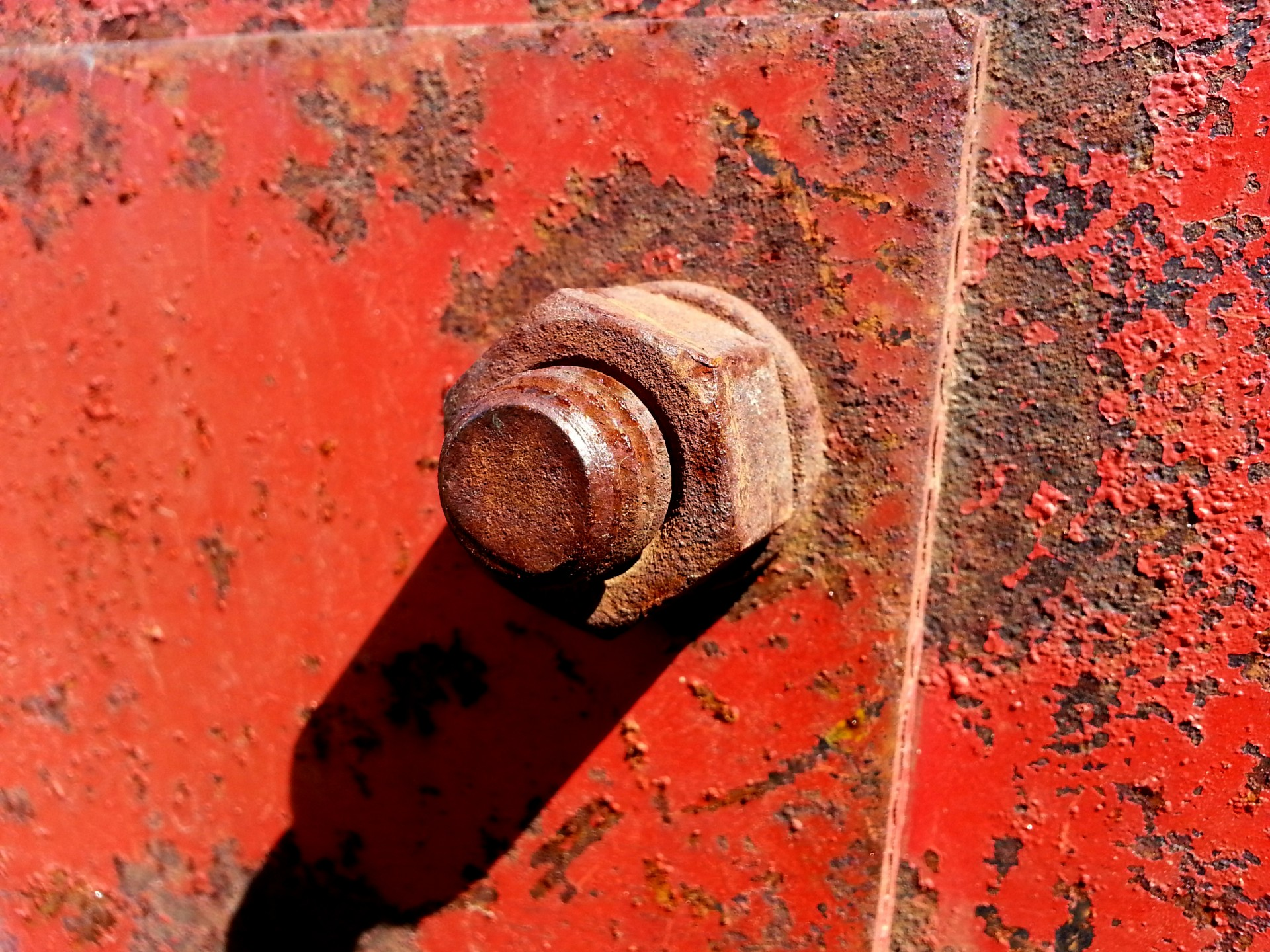 Old Rusty Screw Free Stock Photo - Public Domain Pictures
