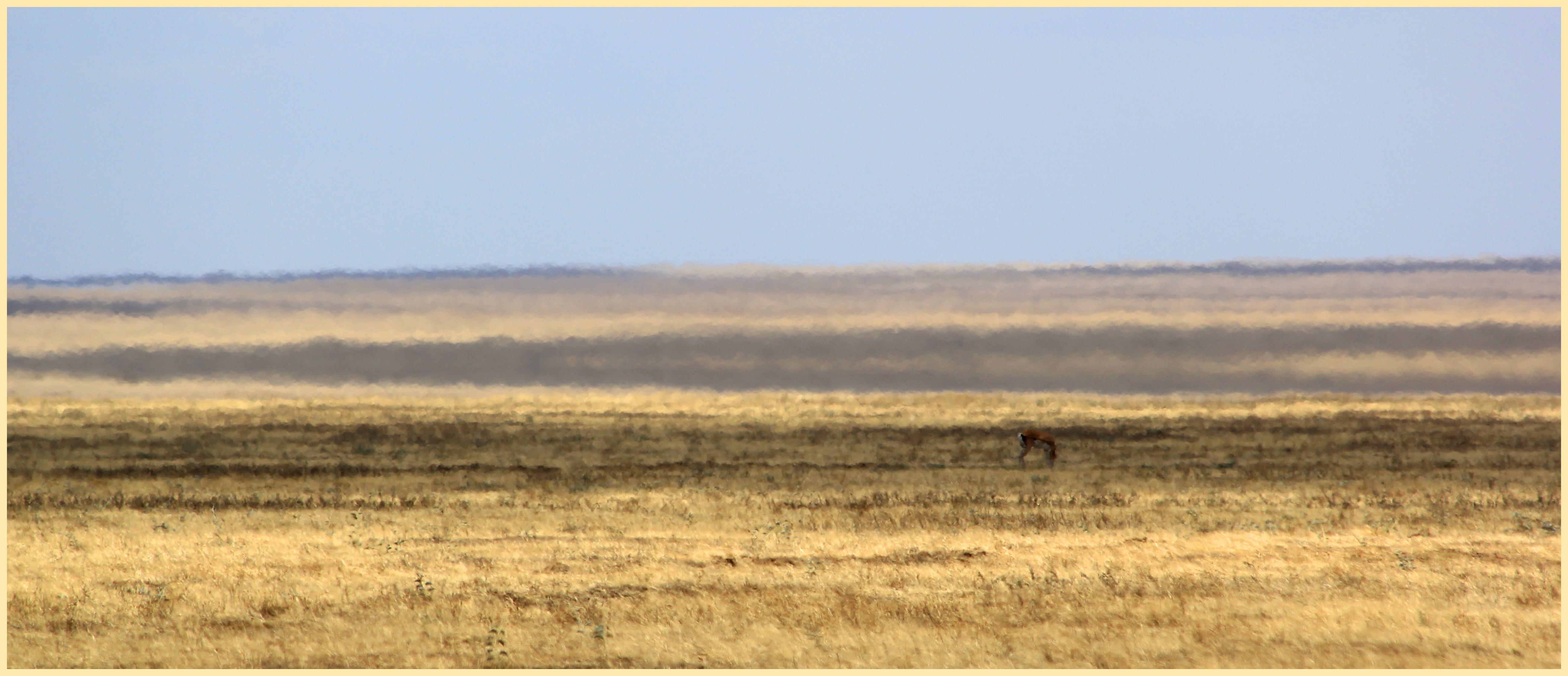 Safari: Part III – The endless plain: Serengeti | iago80