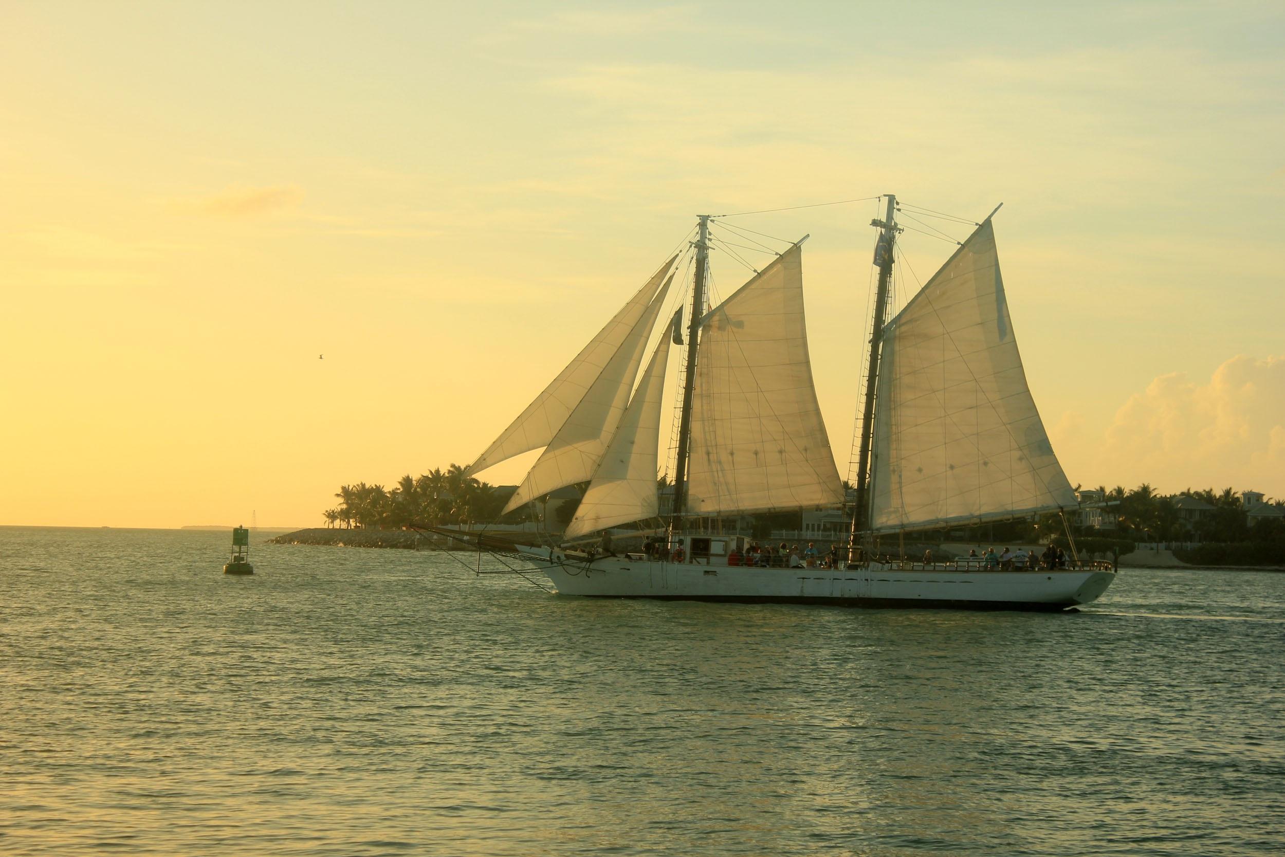 Sail Boats, Activity, Boat, Nature, River, HQ Photo