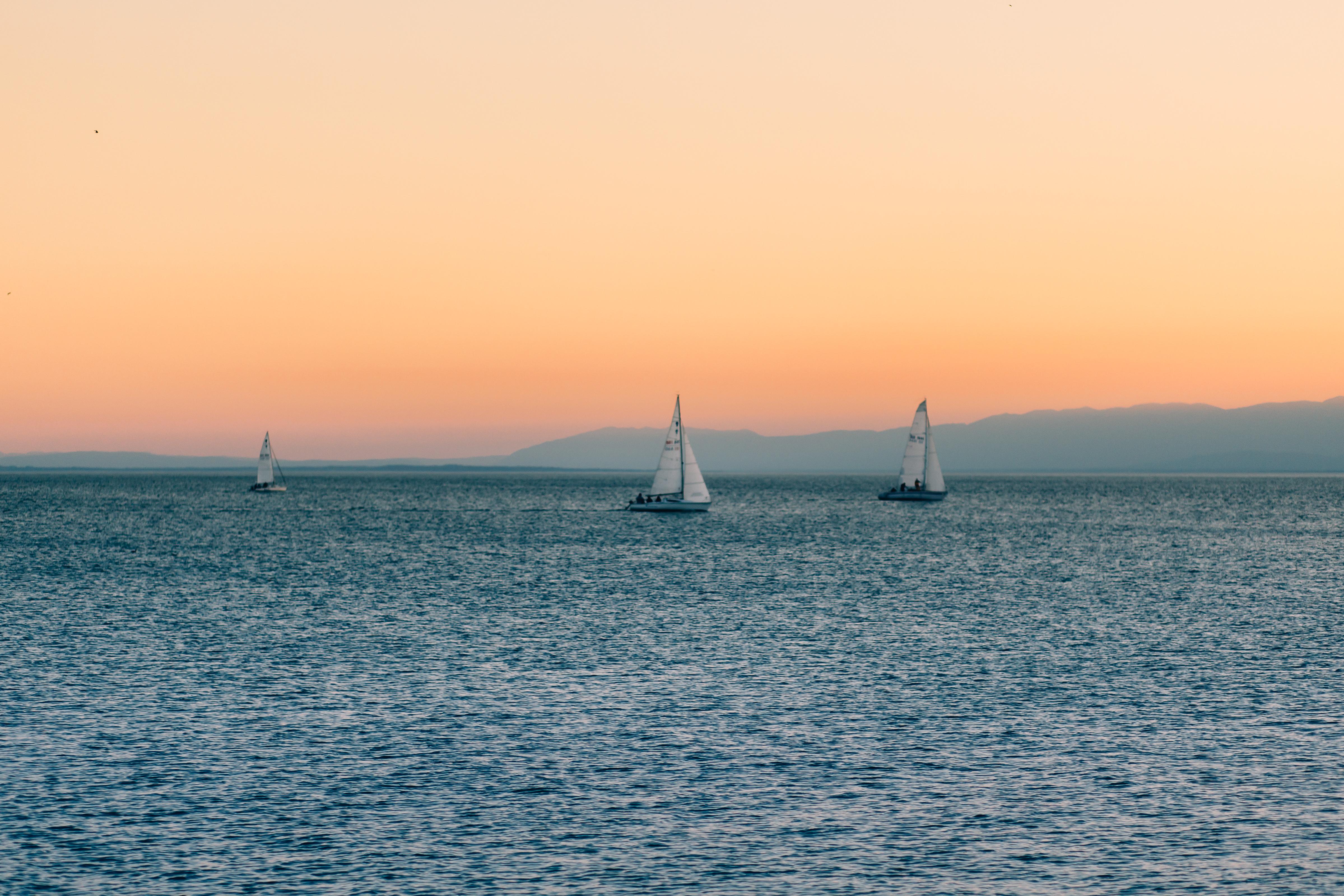 Sail boats photo