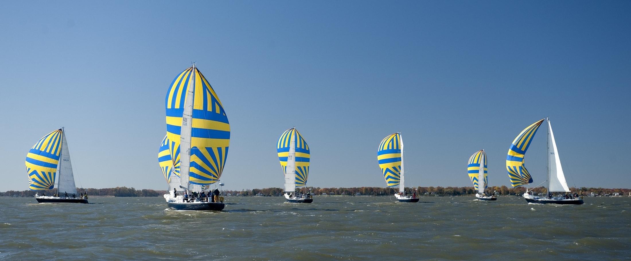 Sailboats racing photo