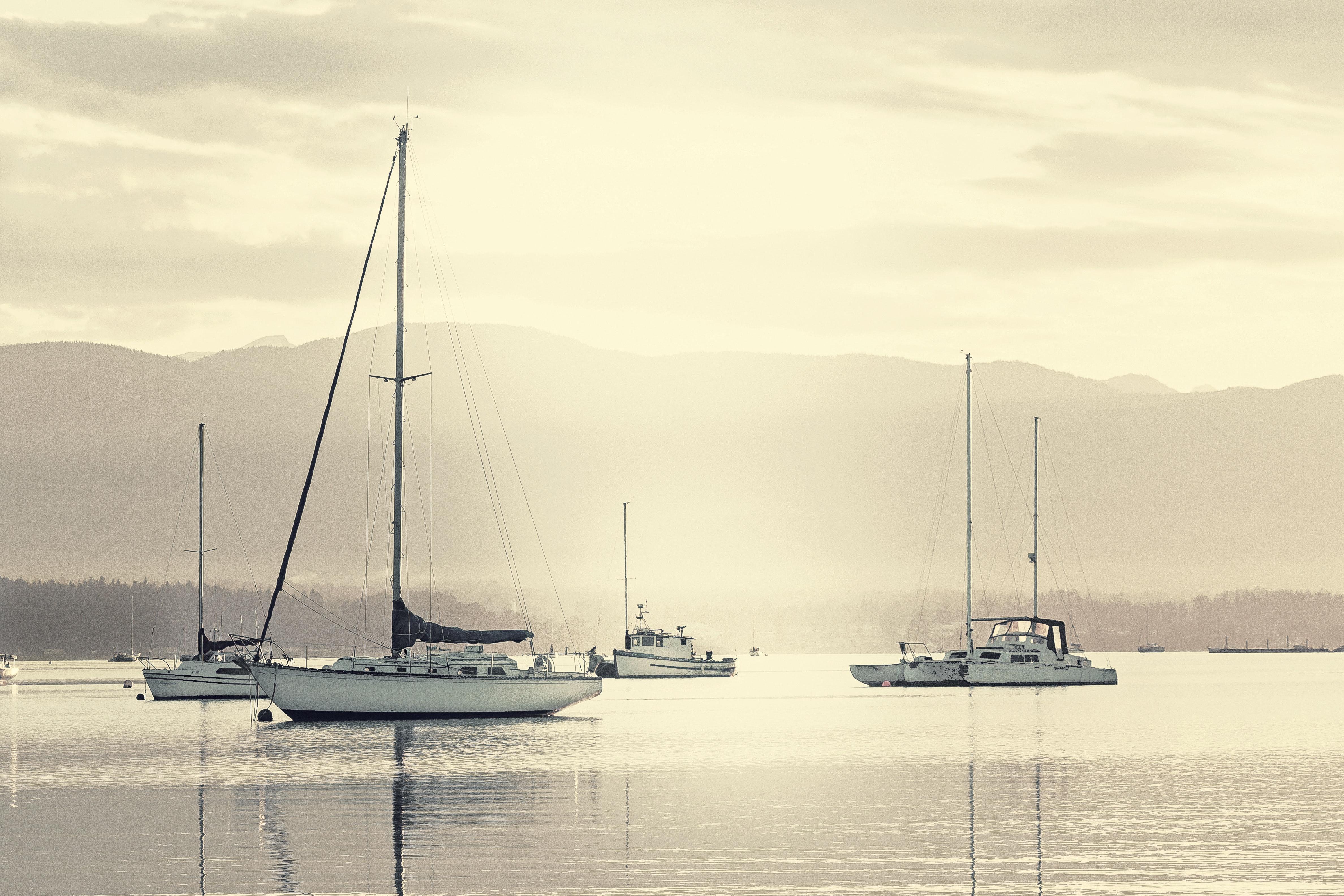 Sailboats sailing on sea against sky photo
