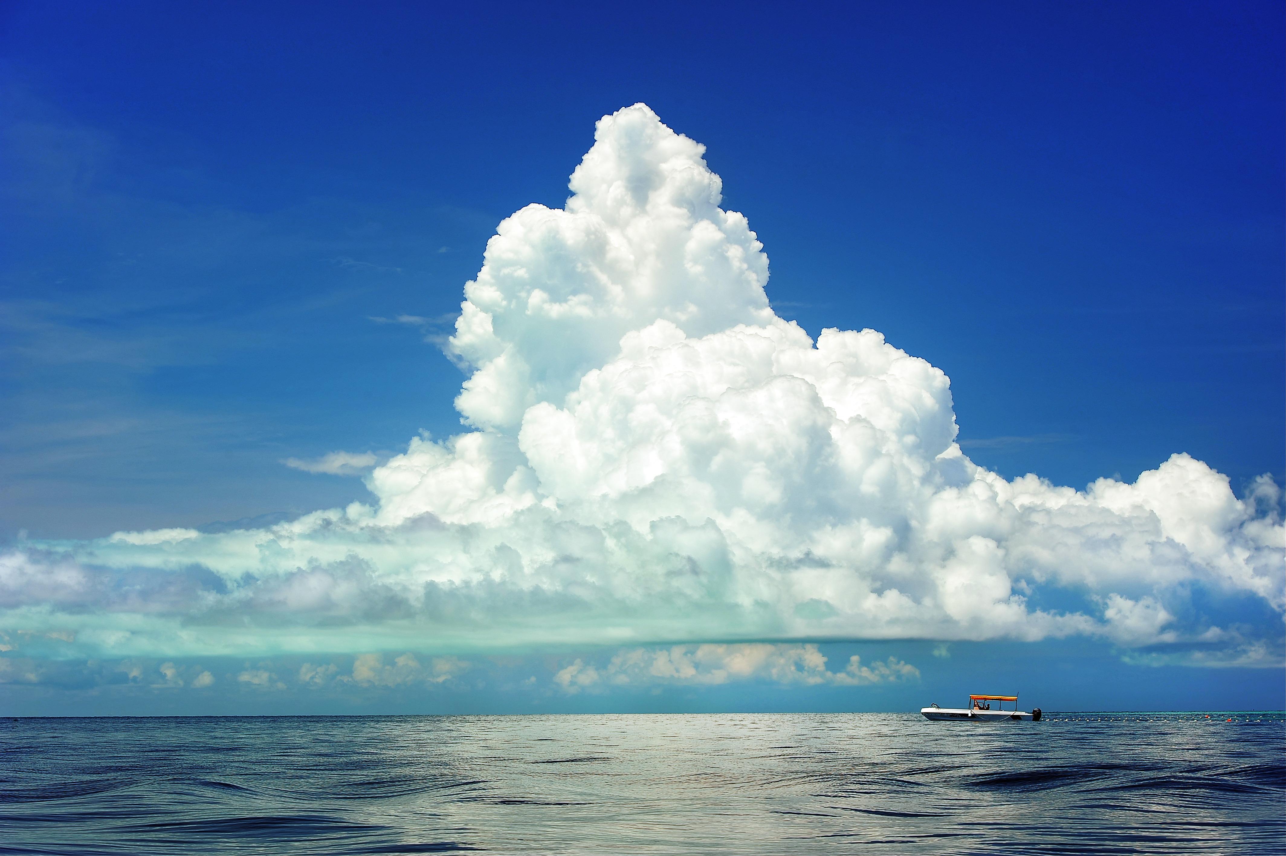 Sailing in the sea photo