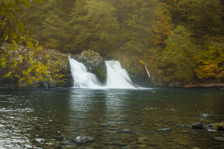 Salmon Falls in autumn, Oregon, Autumn, Fall, Foliage, Forest, HQ Photo