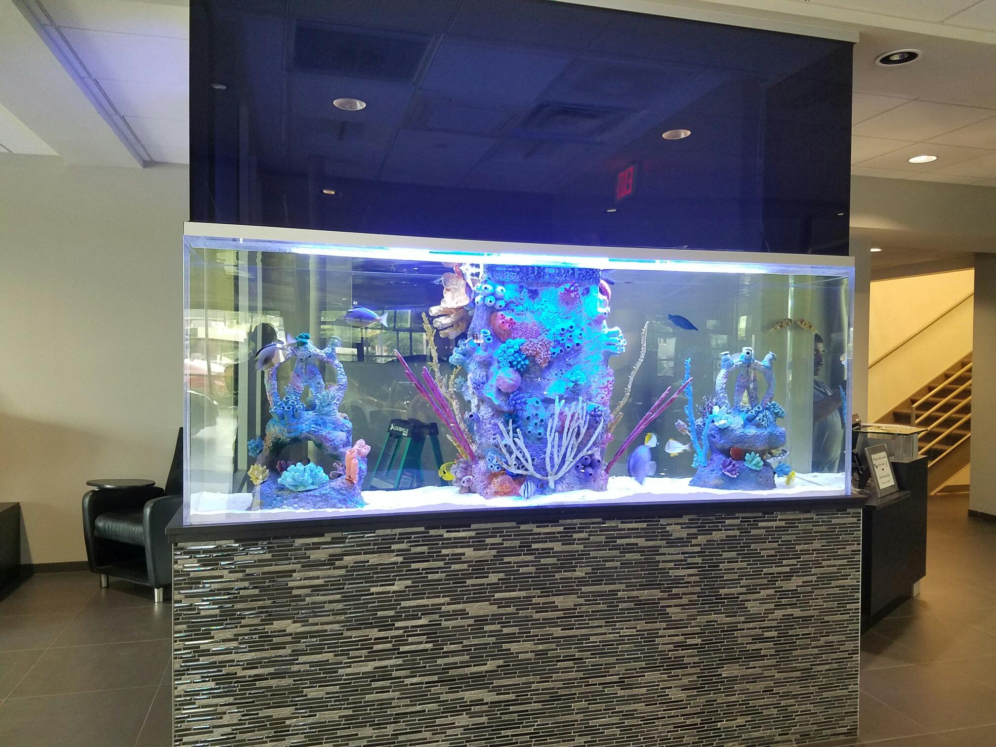 Acura Motors Saltwater Aquarium - Blue Planet Aquarium