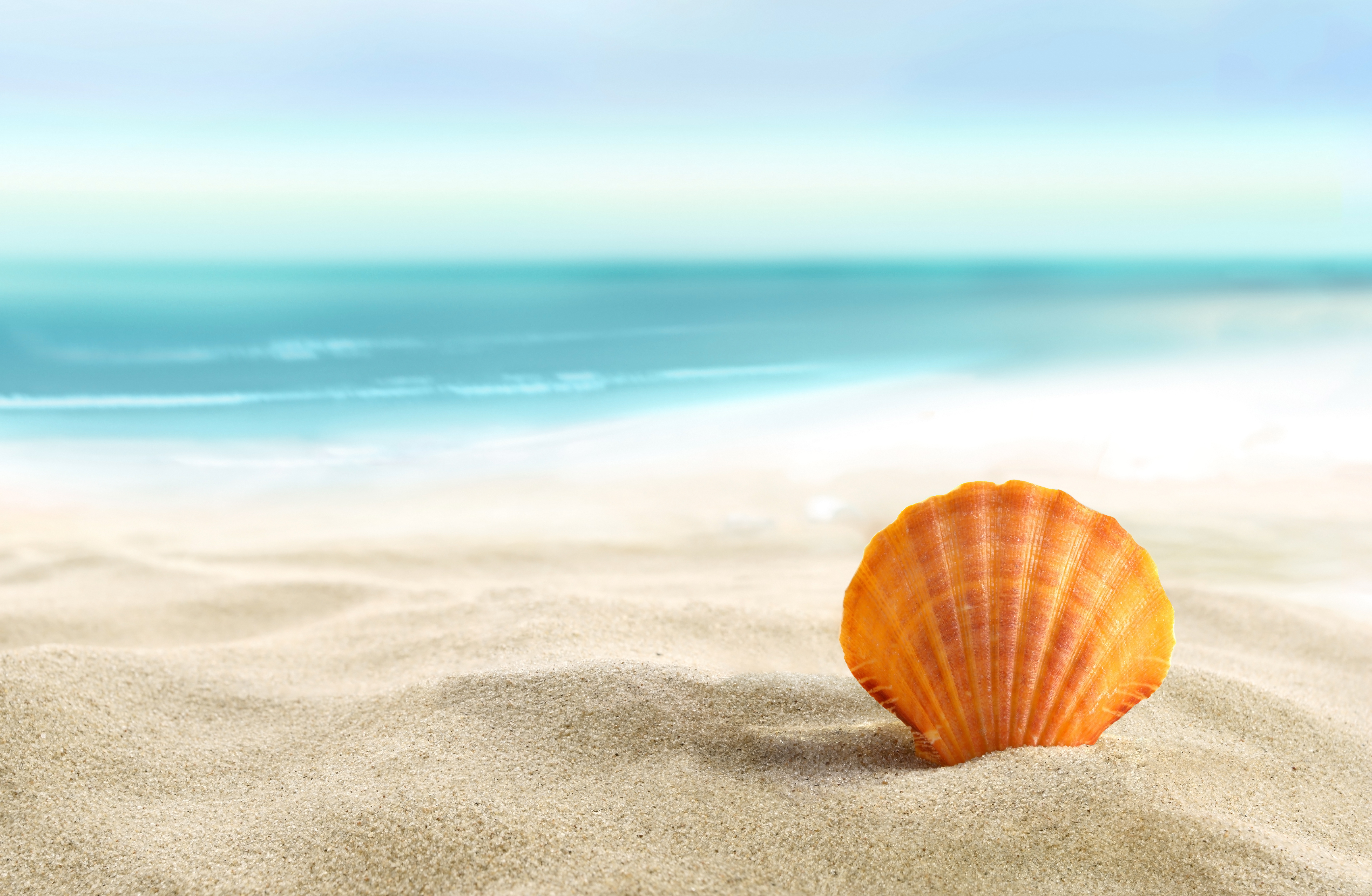 Beach Sand 87253 | DFILES | the beach book | Pinterest