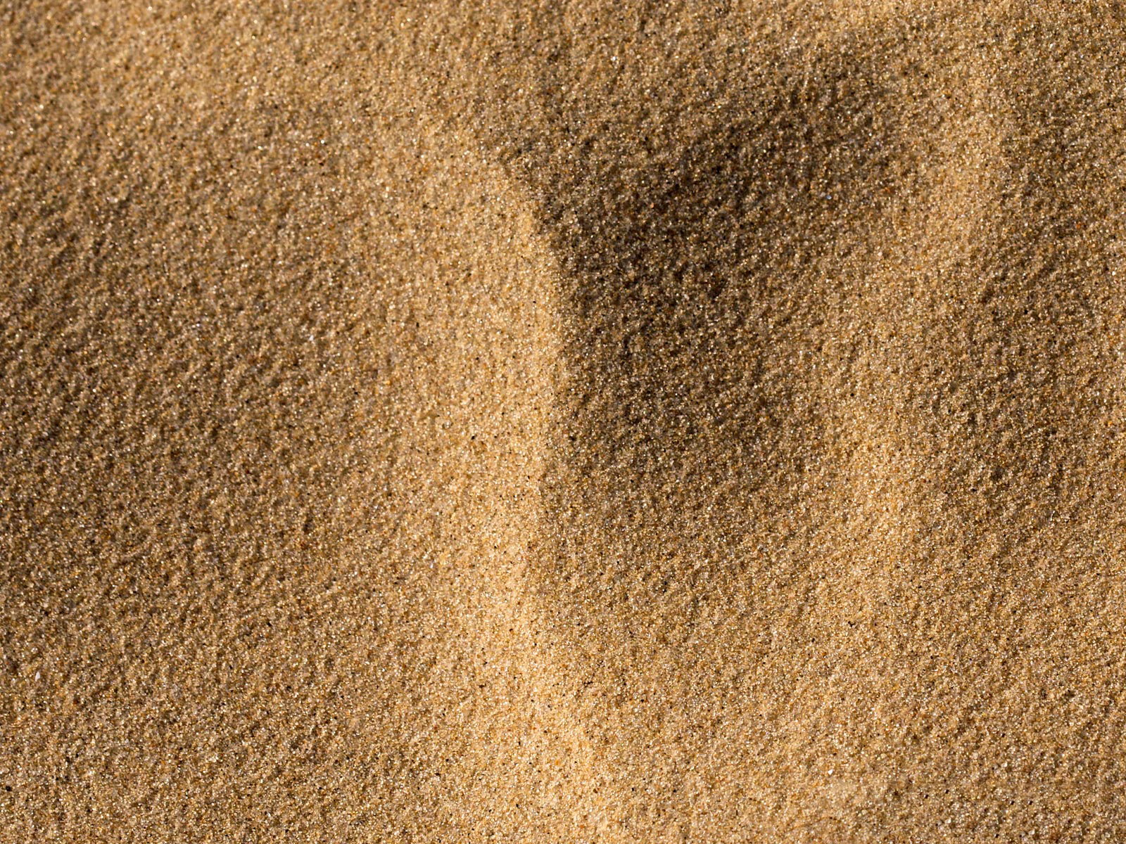 sand texture, sand, texture sand, beach, background, background ...