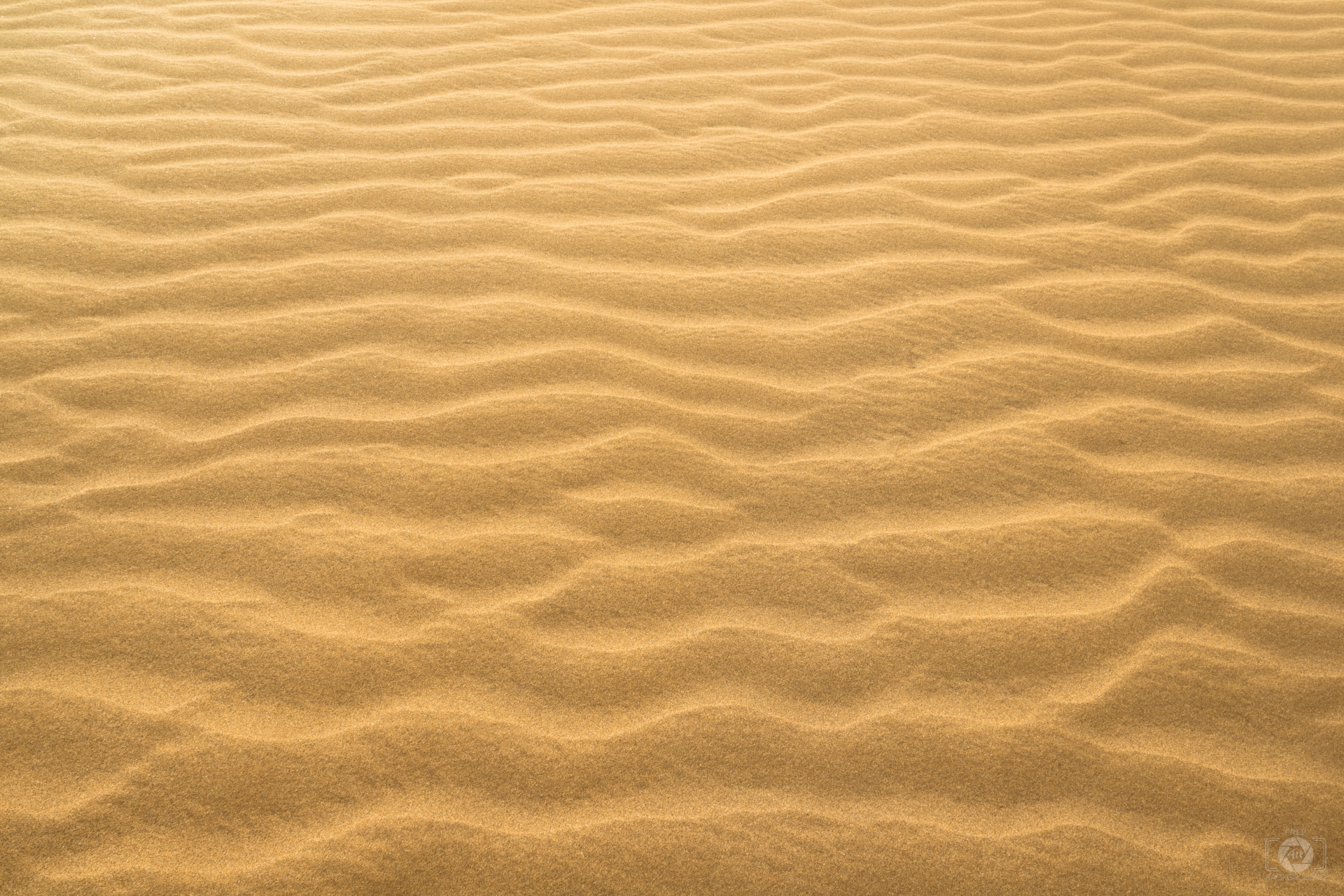 Desert Sand Texture - High-quality Free Backgrounds