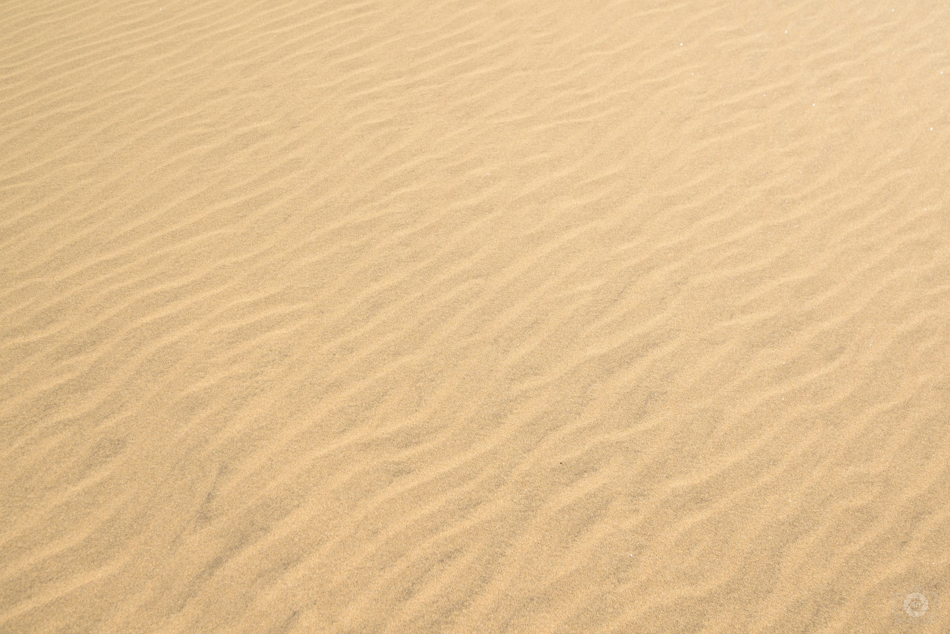 Sand Texture - High-quality Free Backgrounds