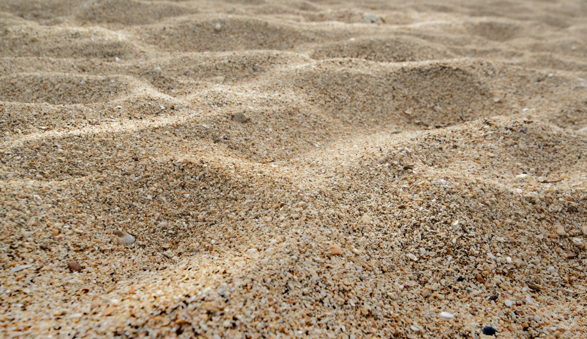Natural Sea Sand Texture - High-quality Free Backgrounds