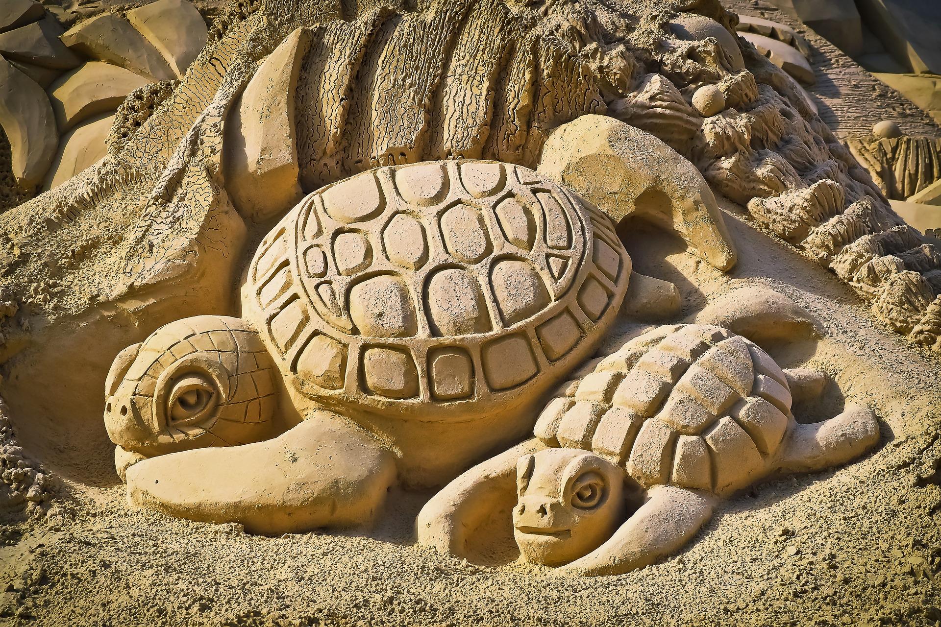 Sandy Turtle, Art, Beach, Figure, Sand, HQ Photo