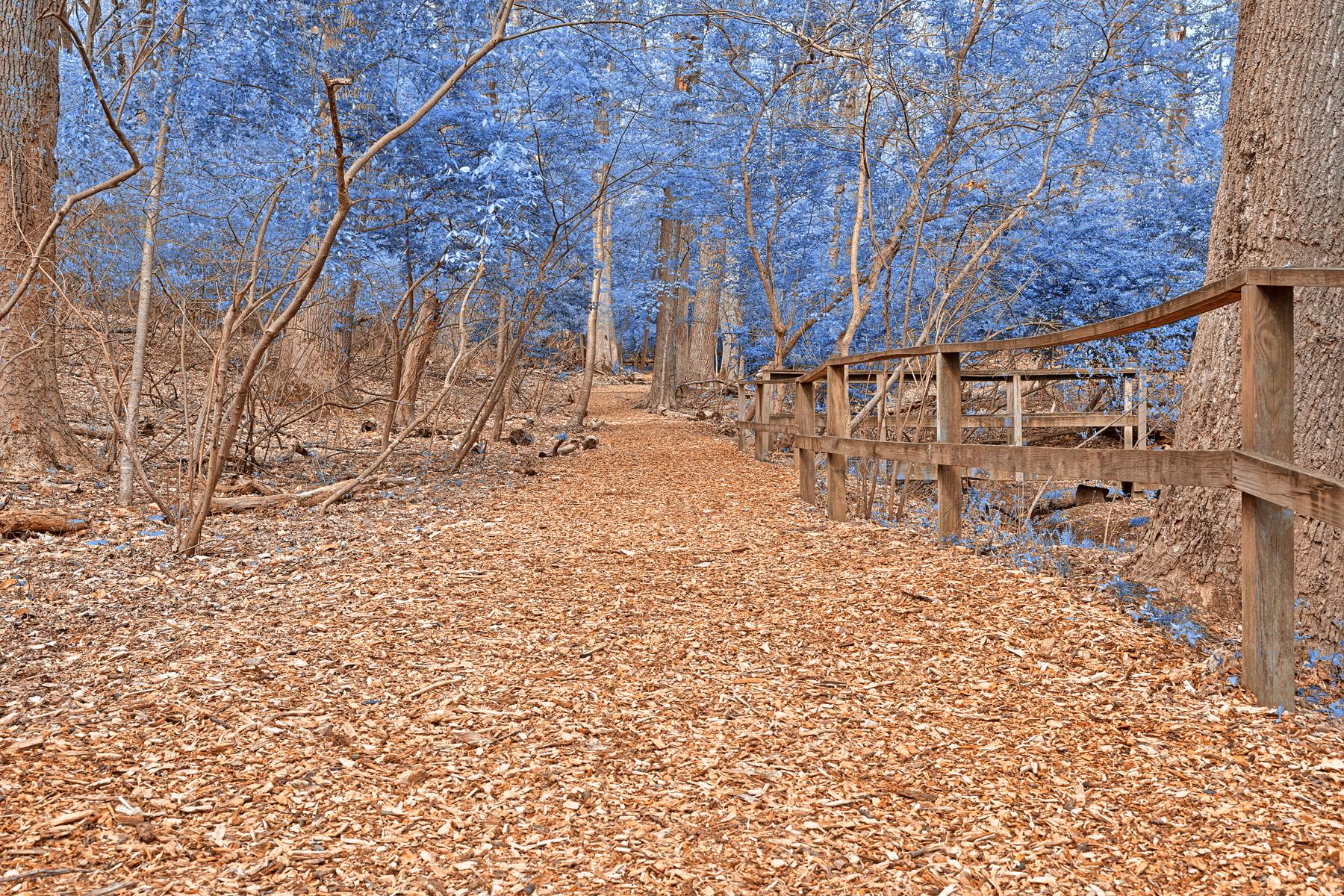 Sapphire Sanctuary Trail - HDR, Sapphire, Spectacular, Somadjinn, Shadows, HQ Photo